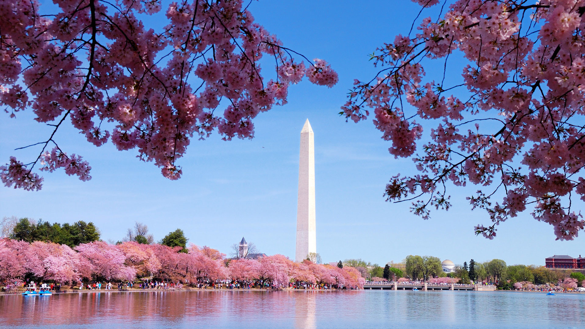 Best Places To Have a Date in Washington, D.C.