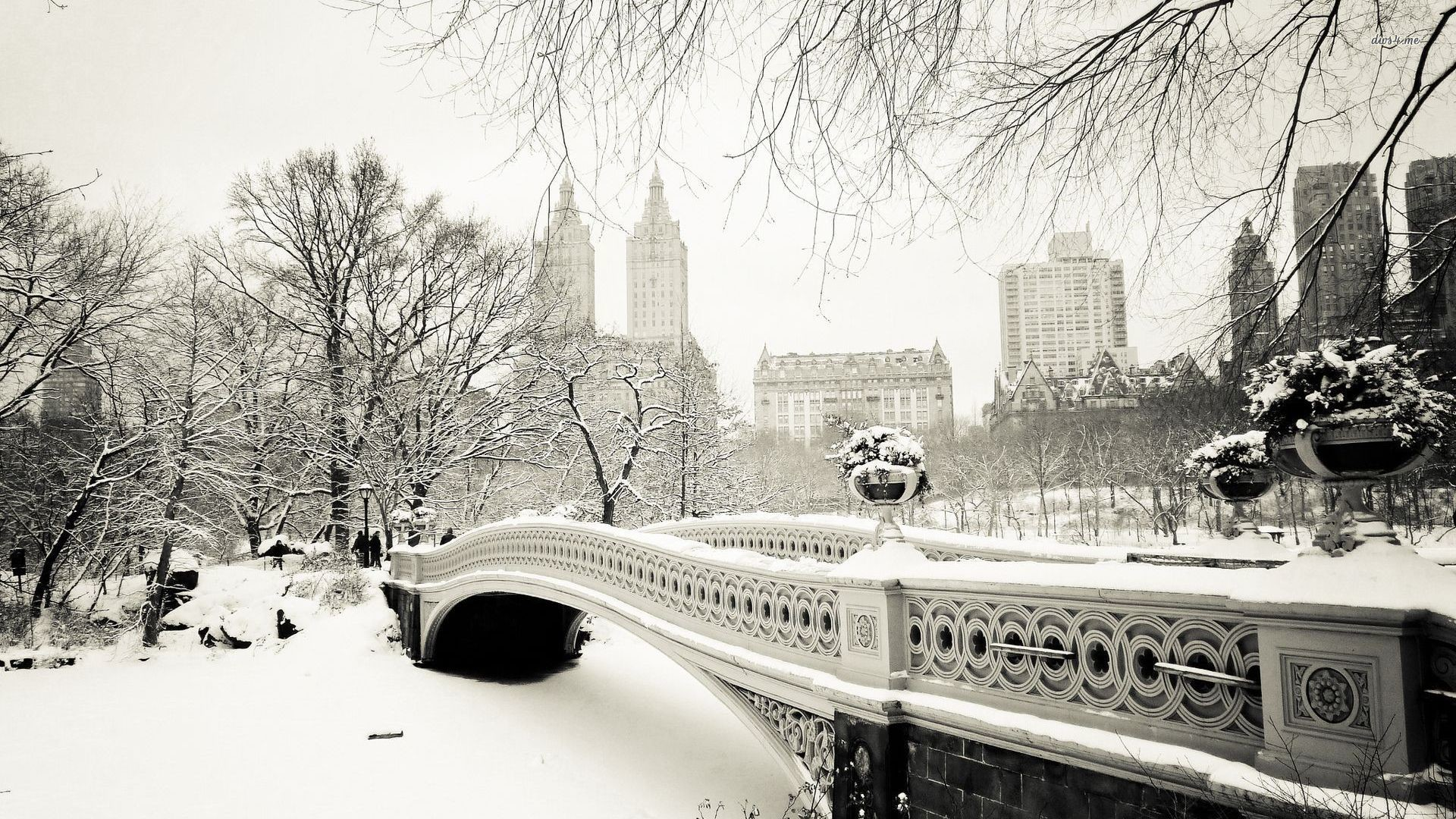 World Winter Snow New York City New York USA Central Park