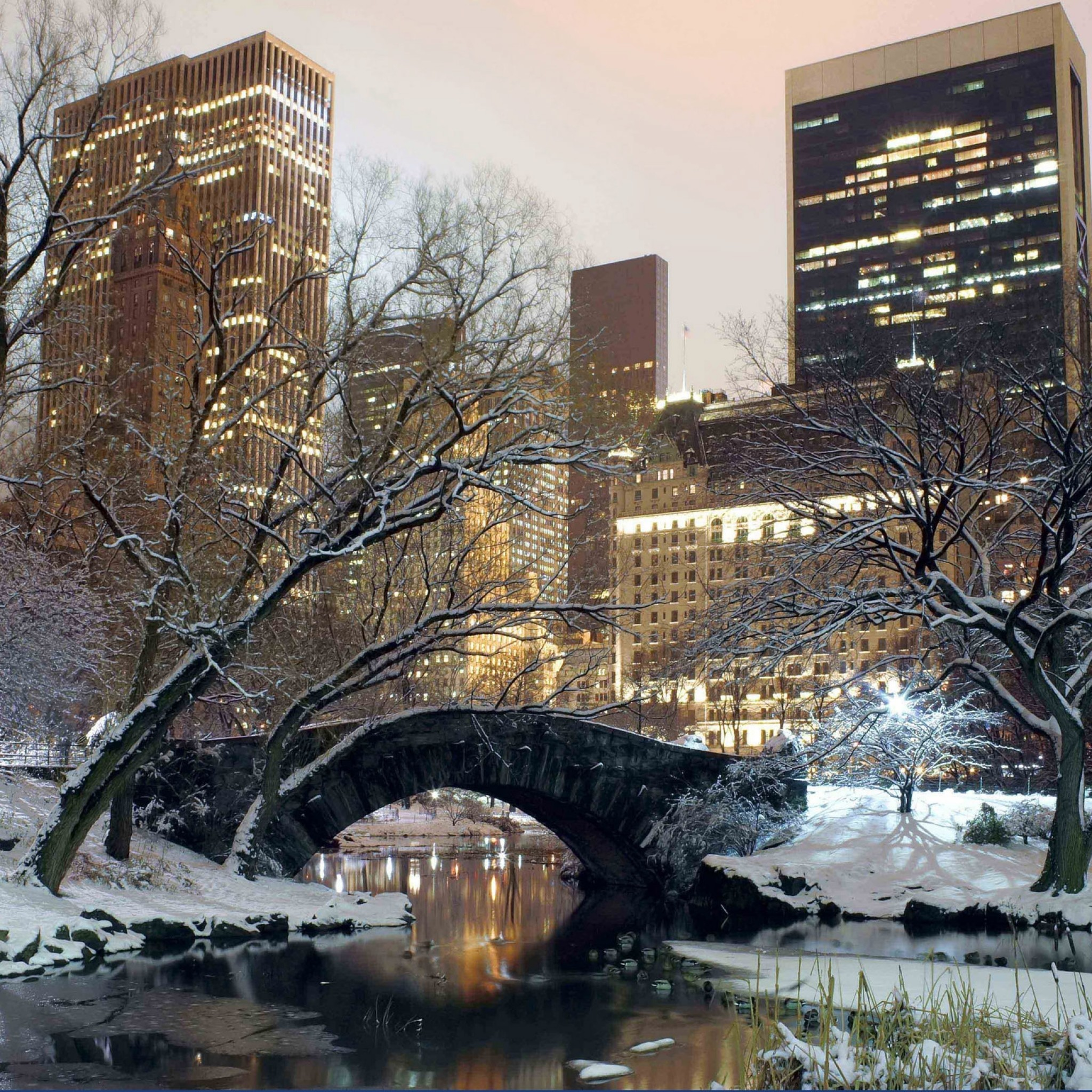 Preview wallpaper winter, park, america, bridge, new york 2048×2048