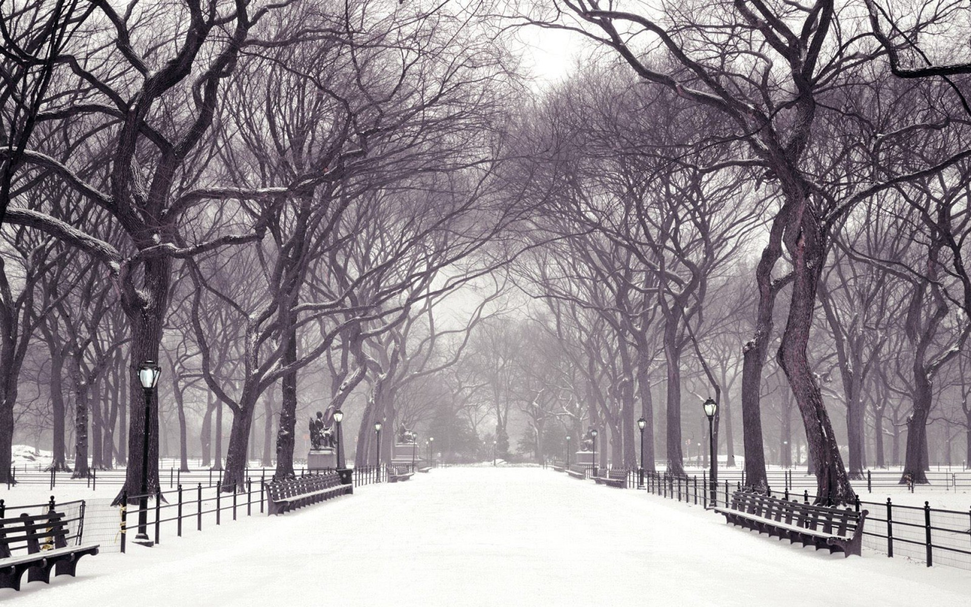 Central Park New York In The Winter desktop wallpaper …