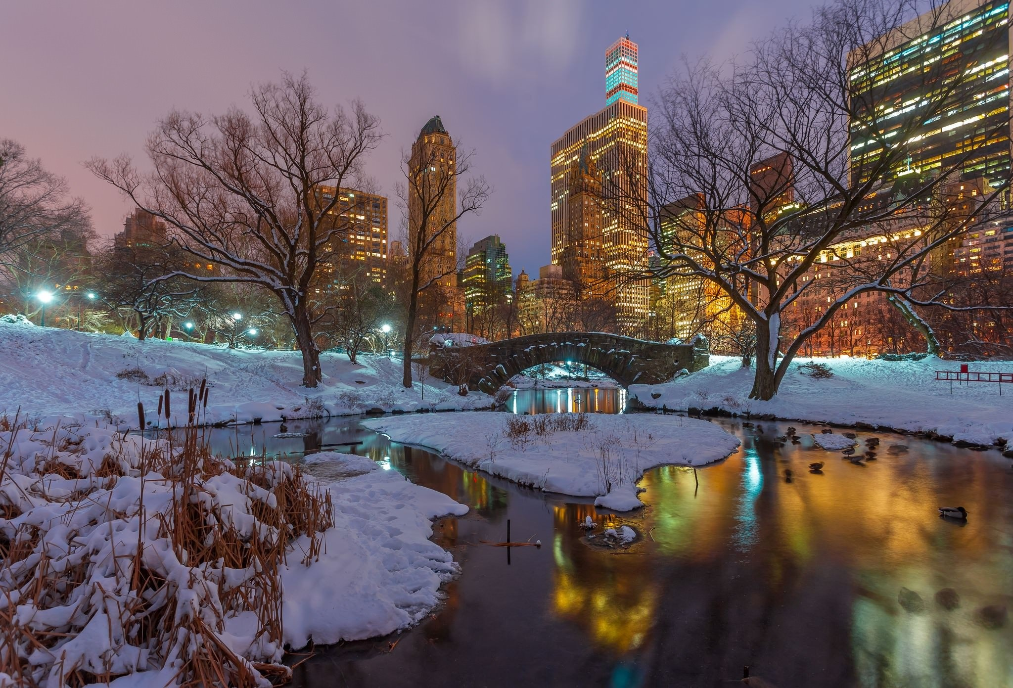 Wallpaper Central park, skyscrapers, reflection, snow, Gapstow Bridge,  winter, trees, ducks, New York » City, nature, landscapes – Free HD Desktop  …