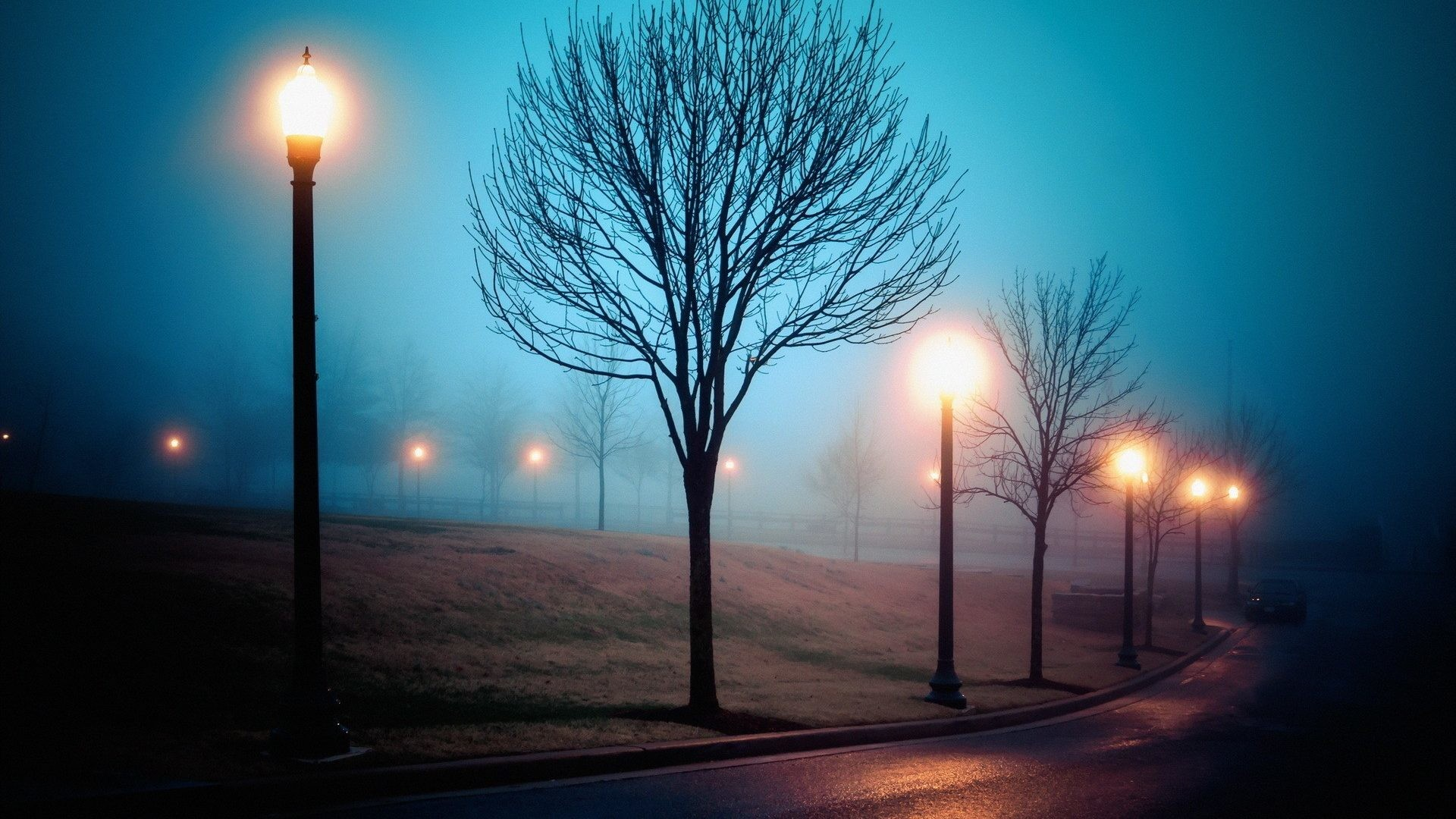 Scenary Tag – Nature Street Winter Sleep Tree Night Lights Park Scenary  Richmond Fog Atmosphere Walking