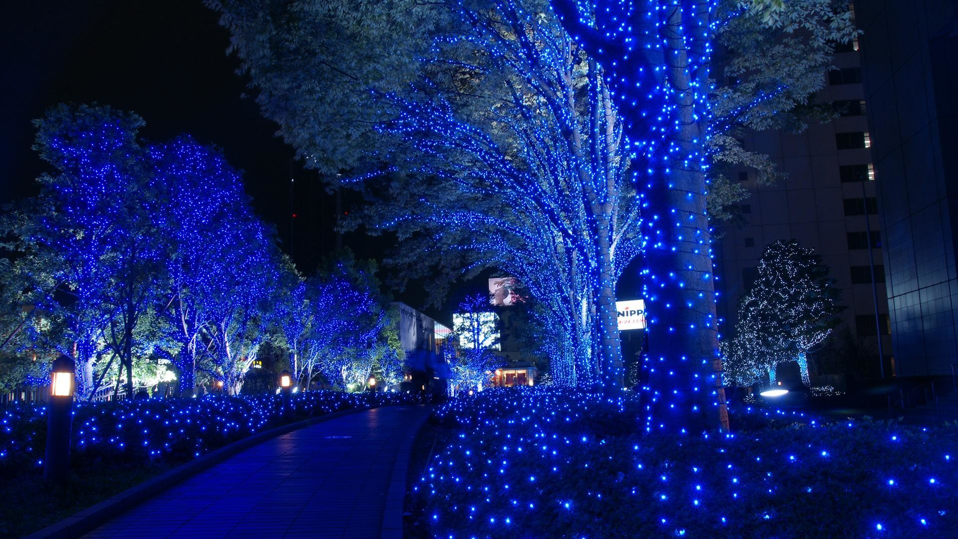 2881 Beautiful Christmas Lights Wallpaper