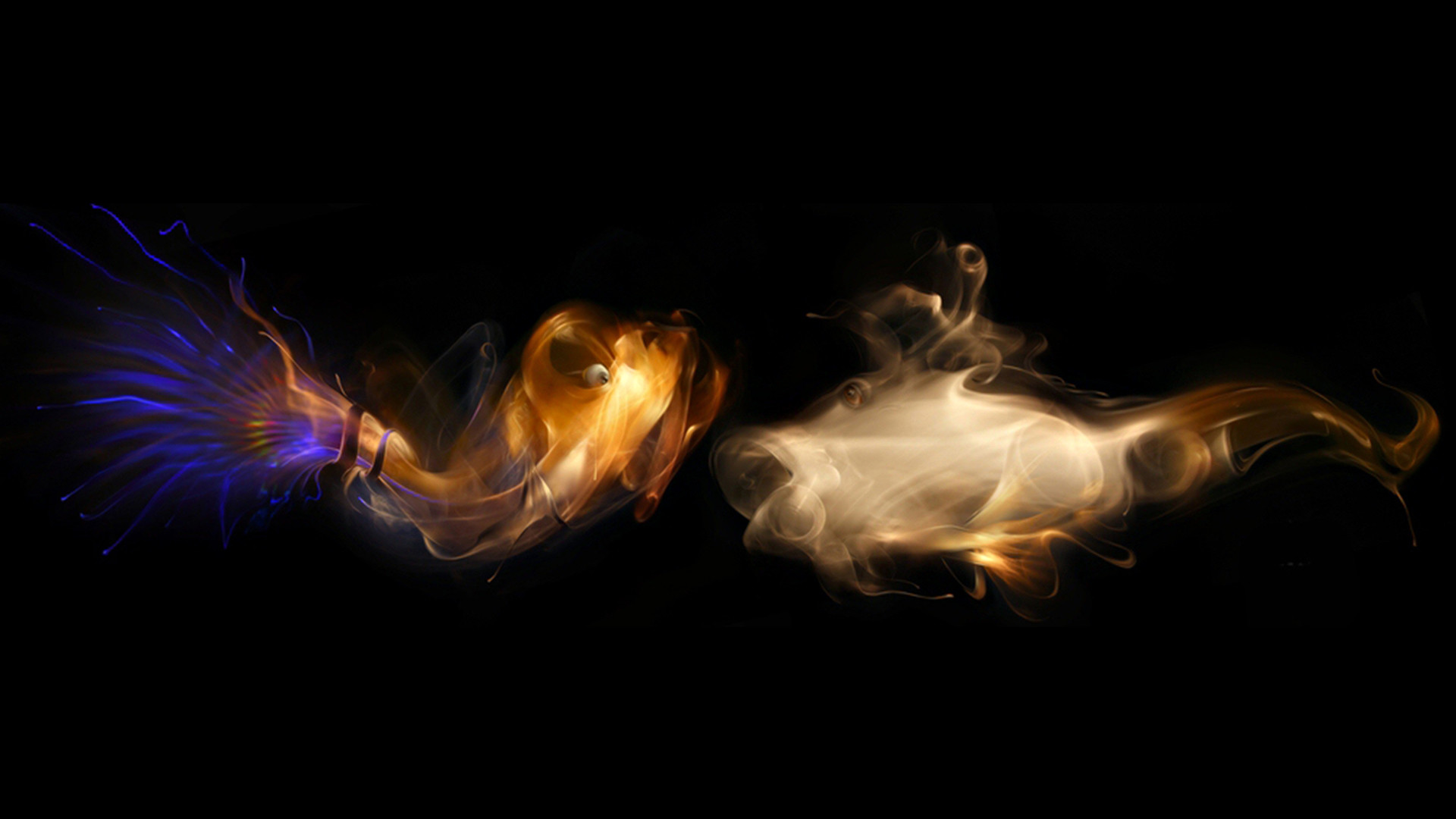 Multi color smoke fish with black background 3d gaming hd wallpapers .