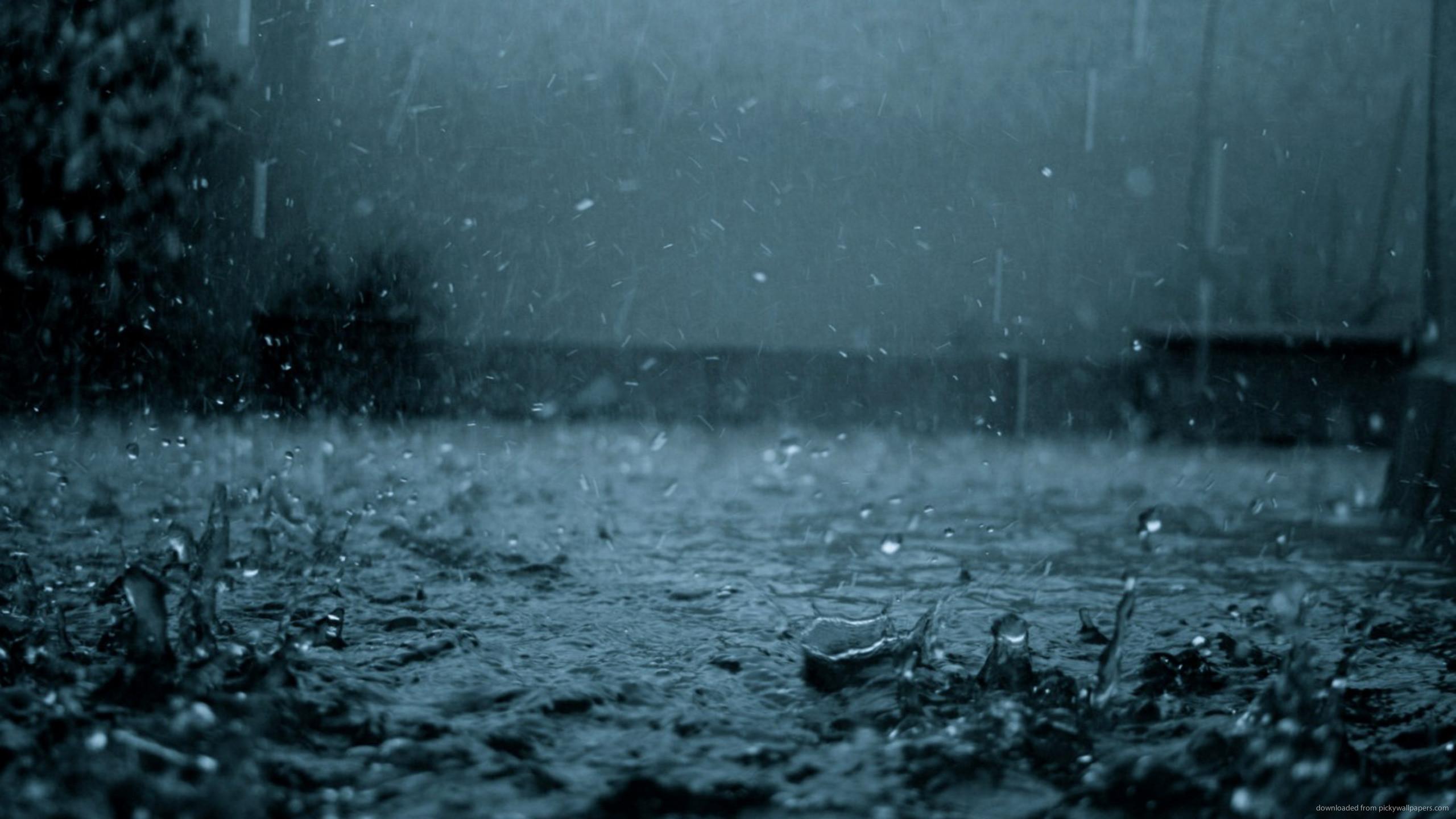 Dark Rain for 2560×1440