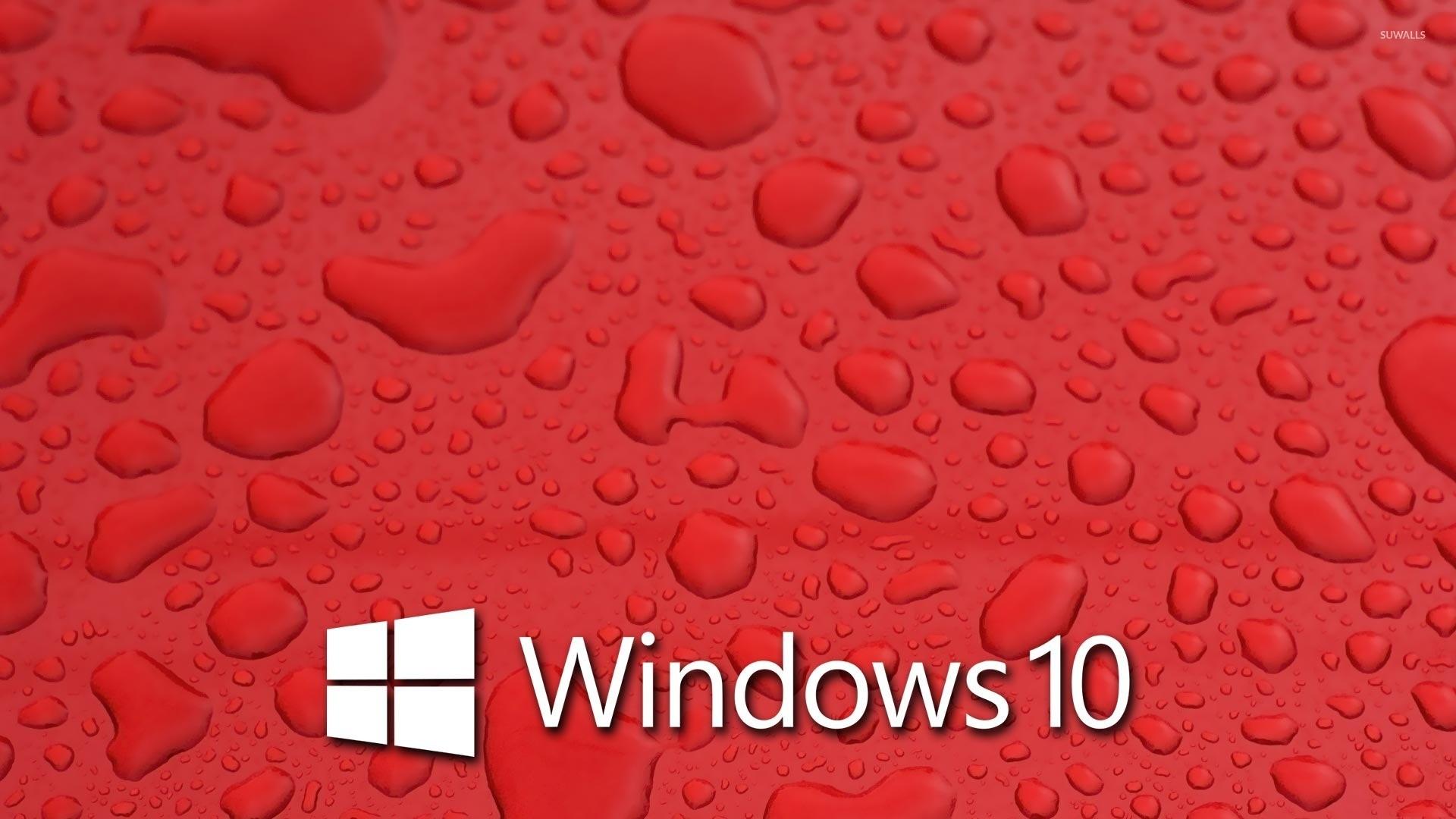Windows 10 on blue hydrangeas [4] wallpaper – Computer wallpapers .