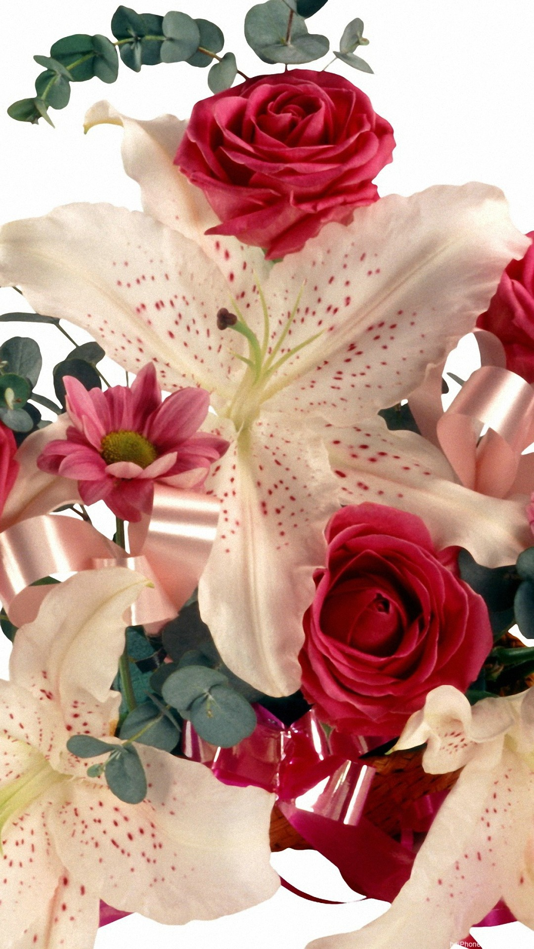 flower wallpaper for iPhone and Android | Lovely Flowers, Roses .