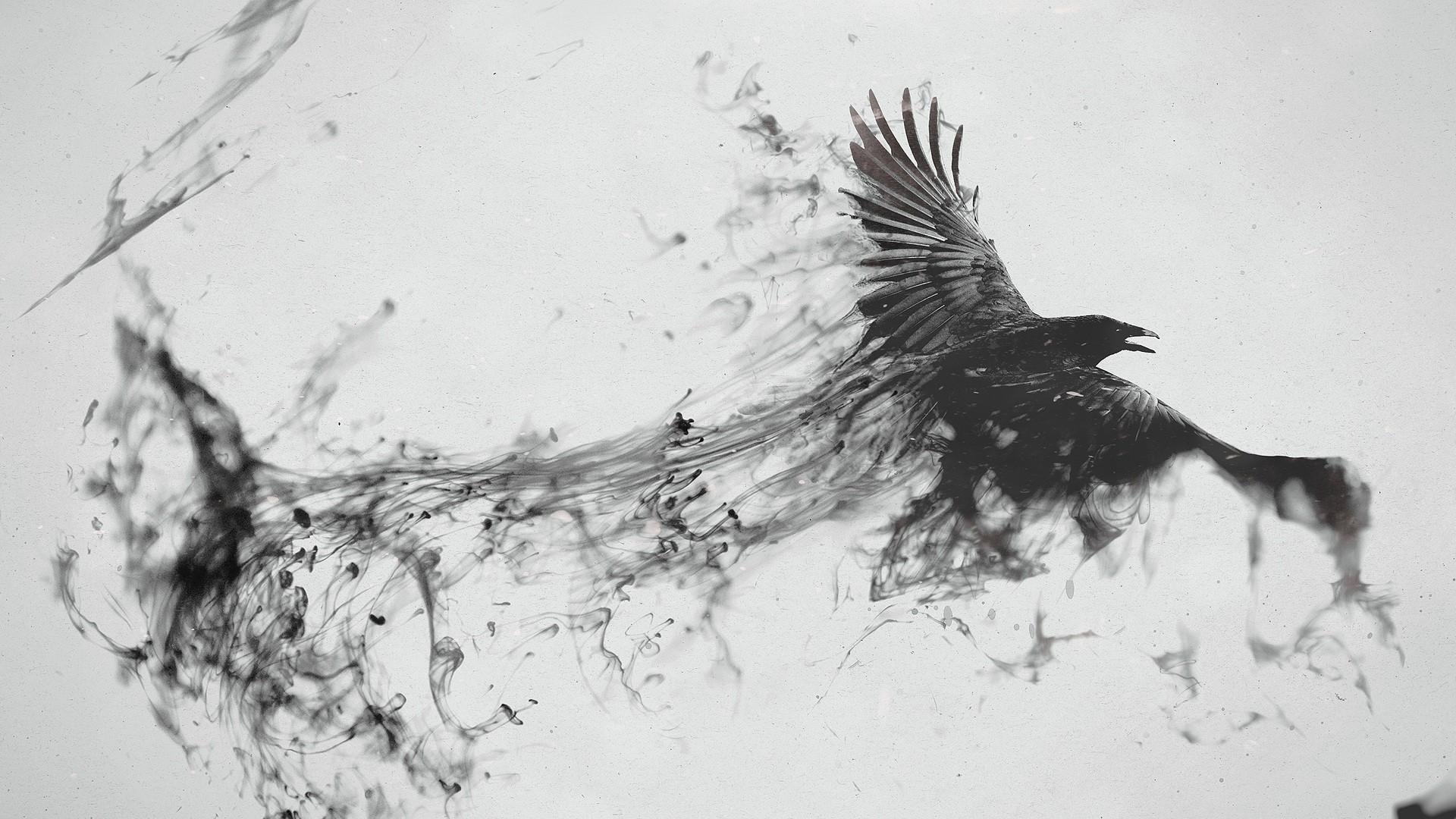 Wallpaper raven, bird, flying, smoke, black white