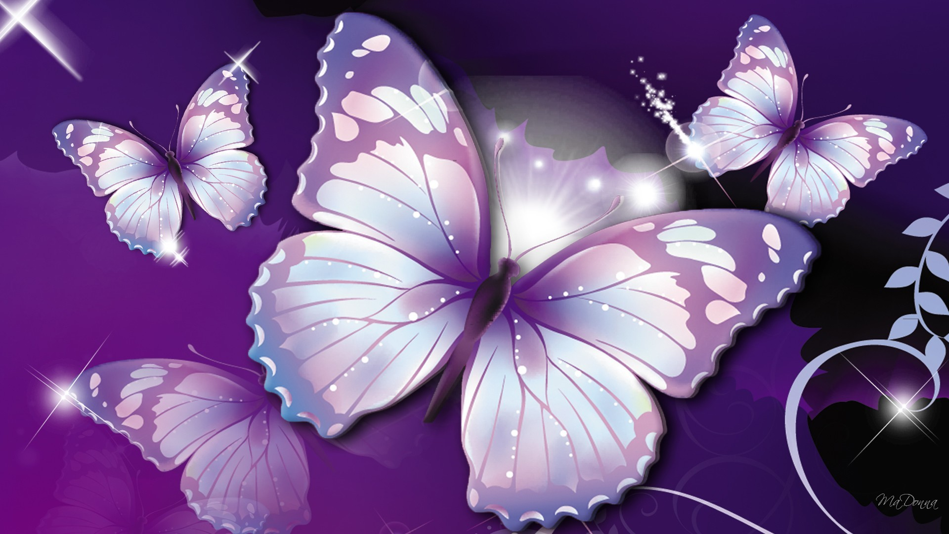Beautiful and pretty purple butterflies ♡♡♡. HD Wallpaper and background  photos of Purple Butterflies ♡ for fans of Butterflies images.
