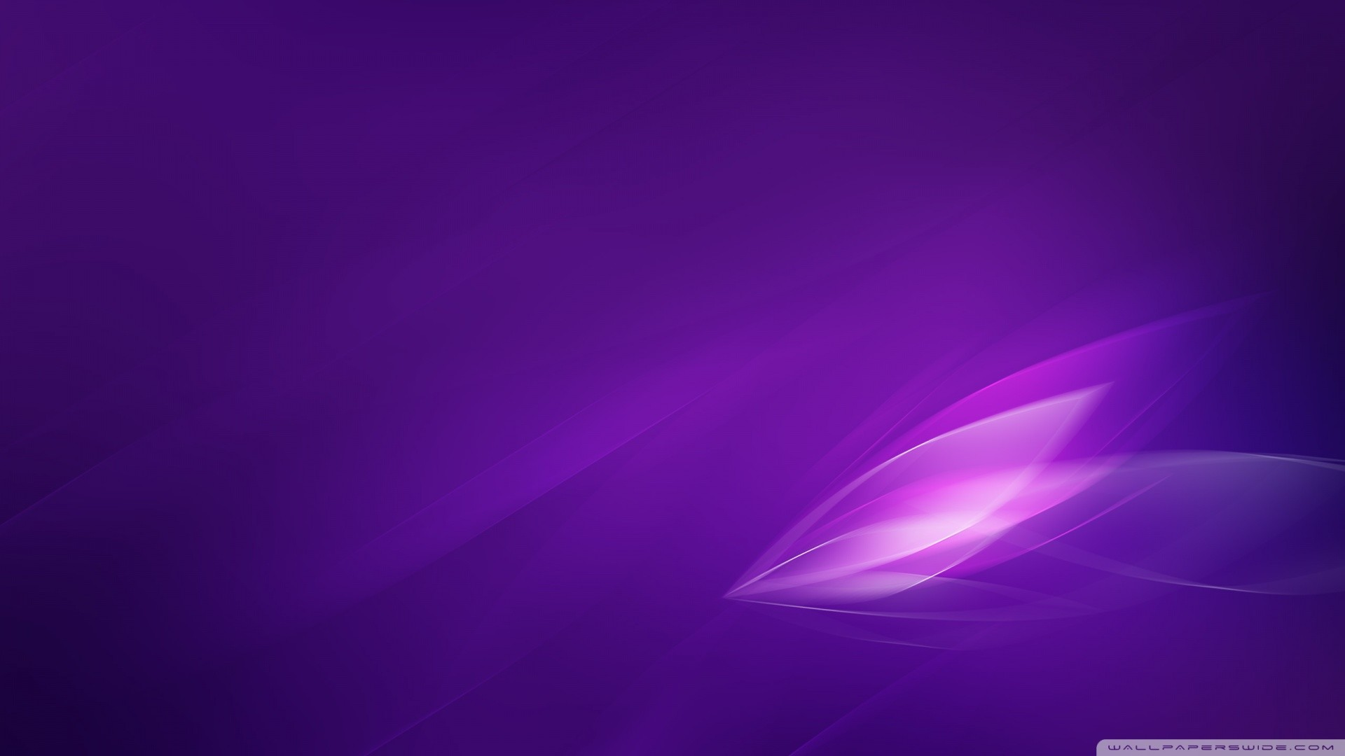 Purple Wallpaper 2966