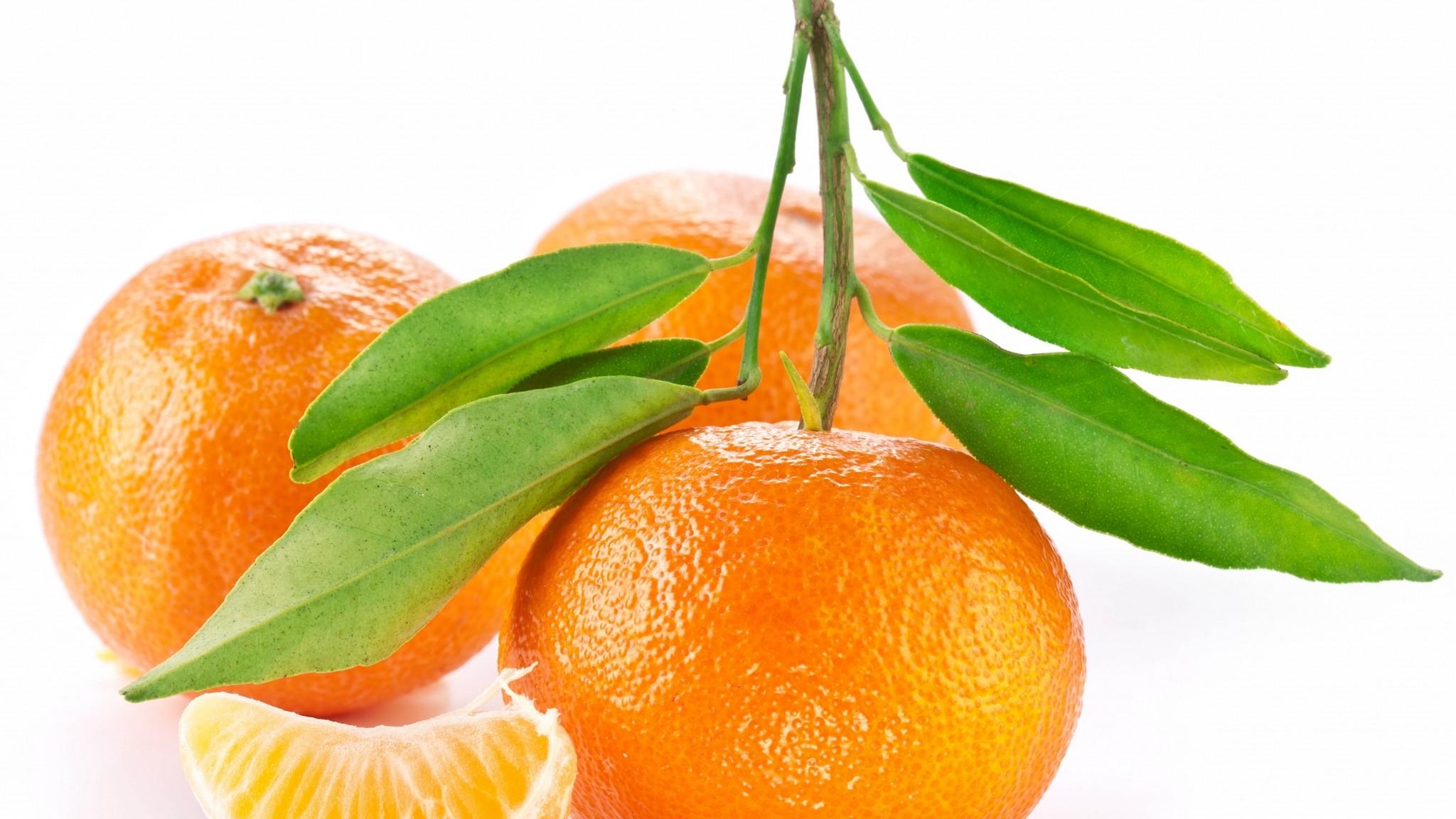 Preview wallpaper orange, fruit, white background, leaf 2048×1152