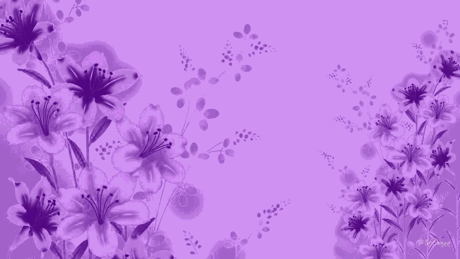 Lavender Colour Wallpaper – Wallpaper, High Definition, High Quality .