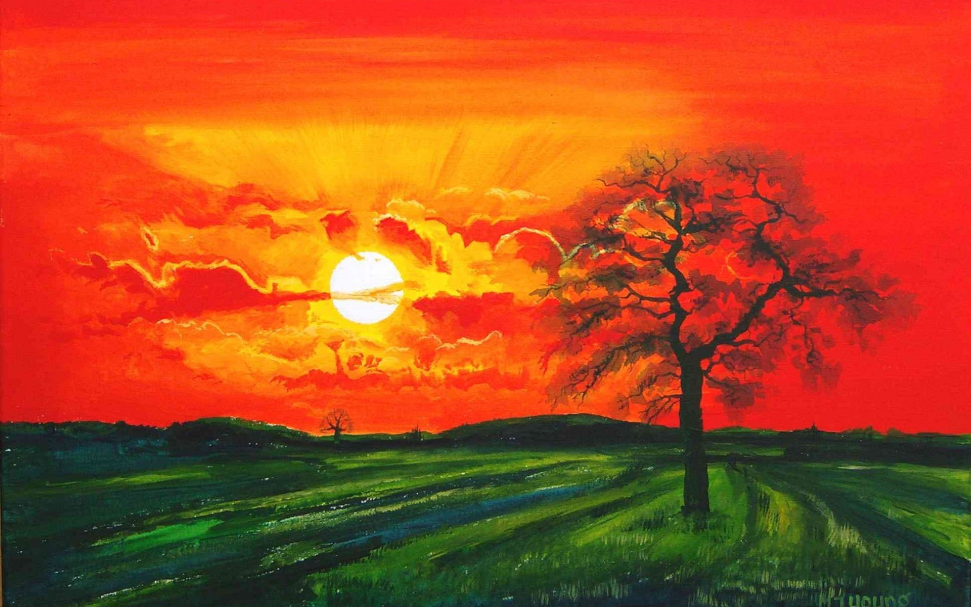 Red Sunset Tree Green Field wallpapers | Red Sunset Tree .