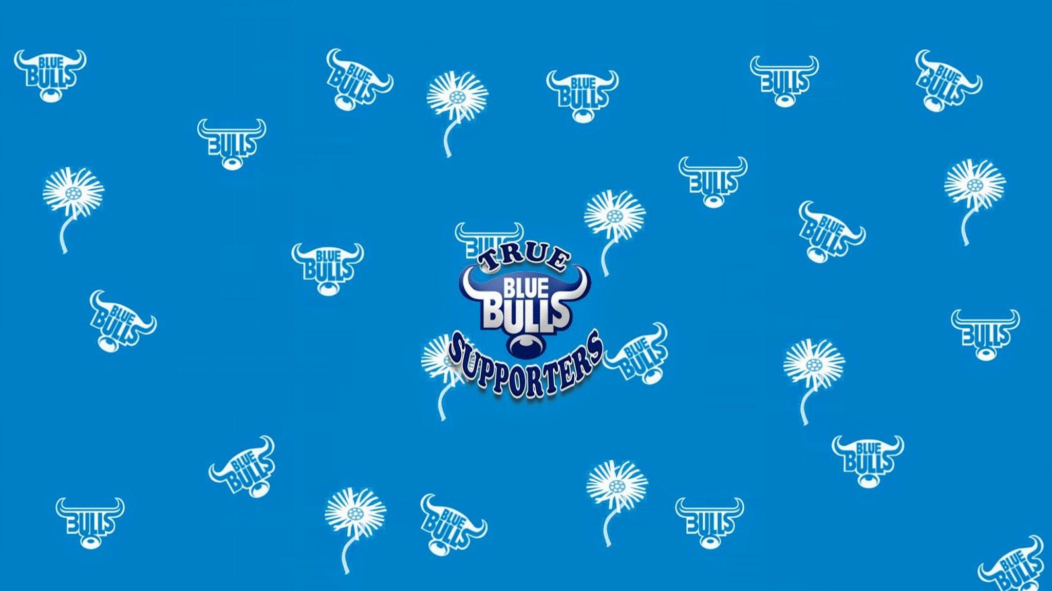 Blue Bulls Wallpapers – Wallpaper Cave