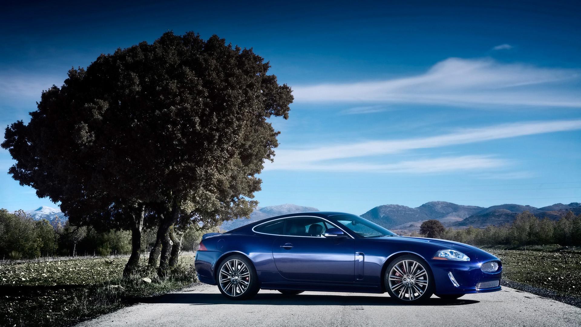 Jaguar Car Images …