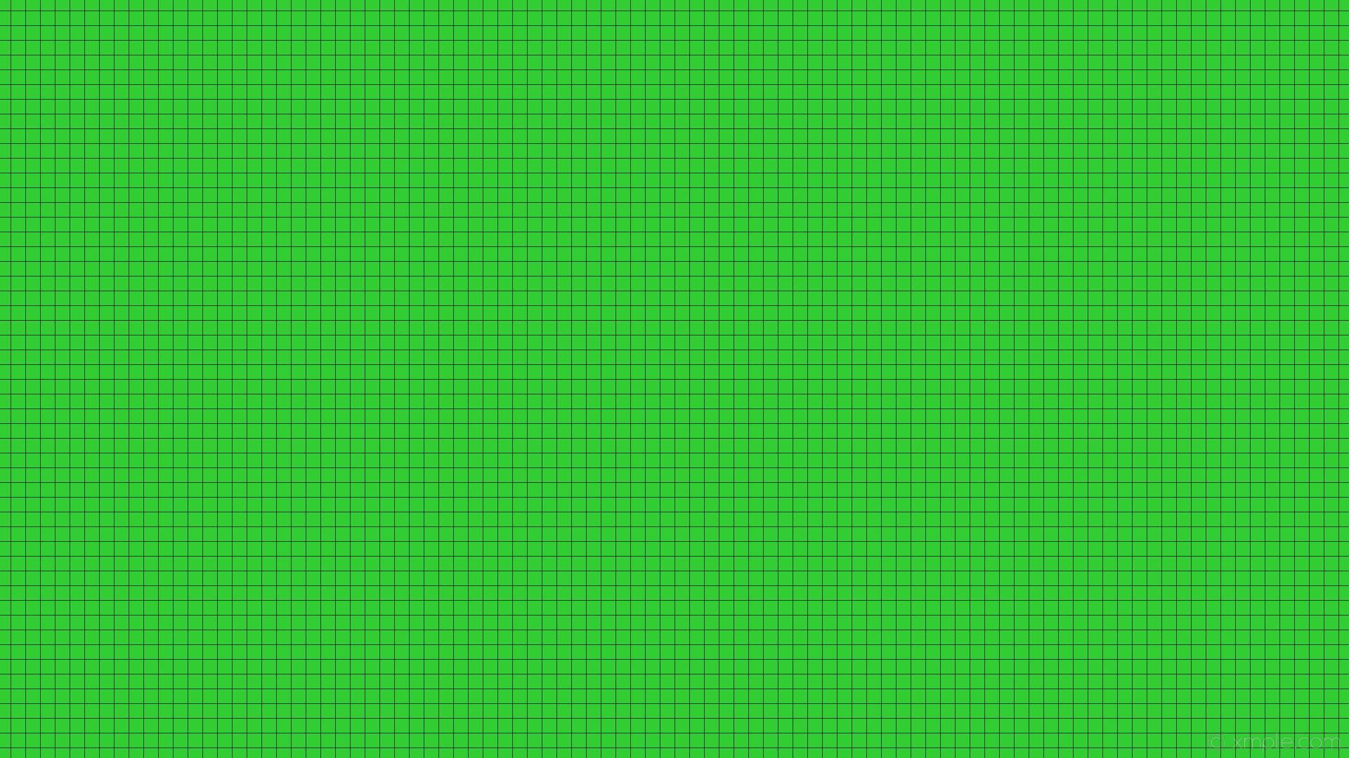 wallpaper green grid black graph paper lime green #32cd32 #000000 0° 1px  21px