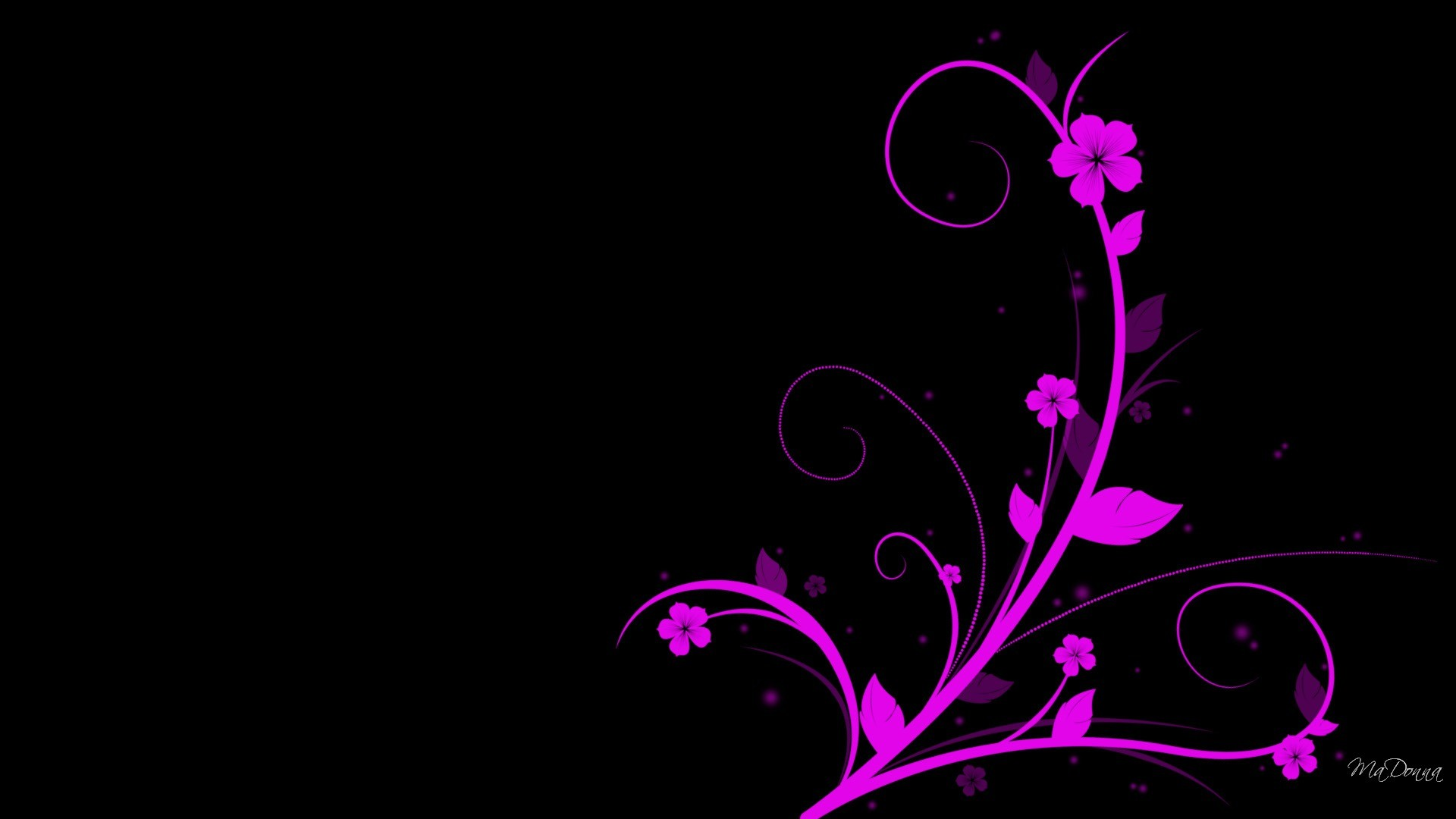 Hot Pink And Black Wallpaper Background Wallpaper 1920×1080
