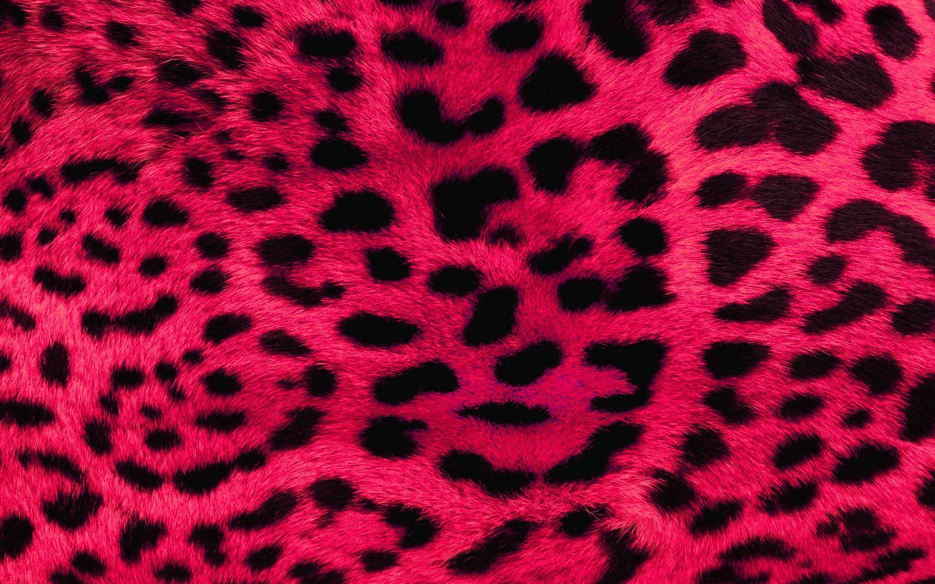 Pink Wallpapers Barbaras HD Wallpapers 1920×1080 Pink Wallpaper Hd (58  Wallpapers)  