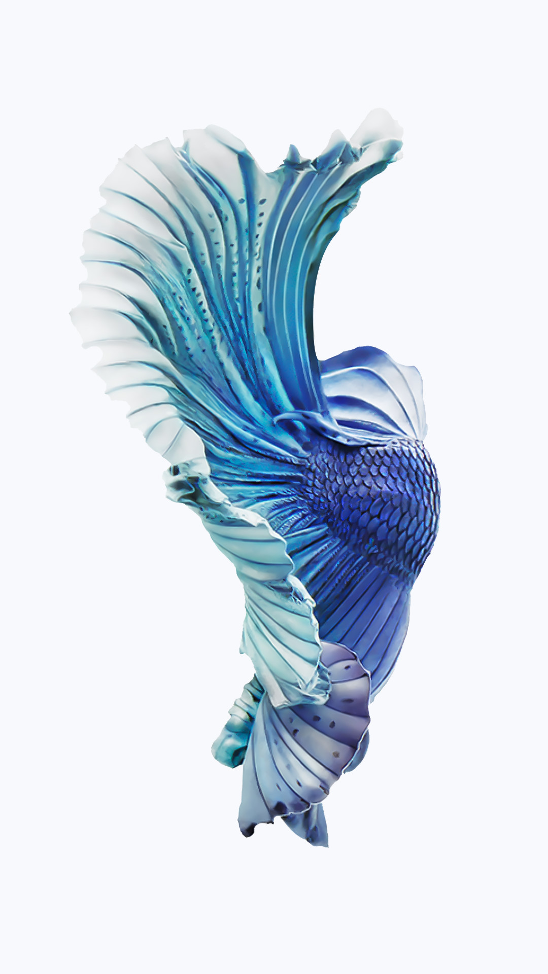 iPhone-6s-Silver-Blue-Fish-Wallpaper.png (1080×