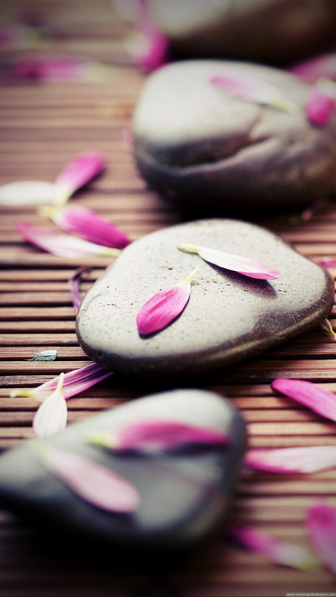 … zen stones pink petals iphone 6 plus hd wallpaper ipod wallpaper …