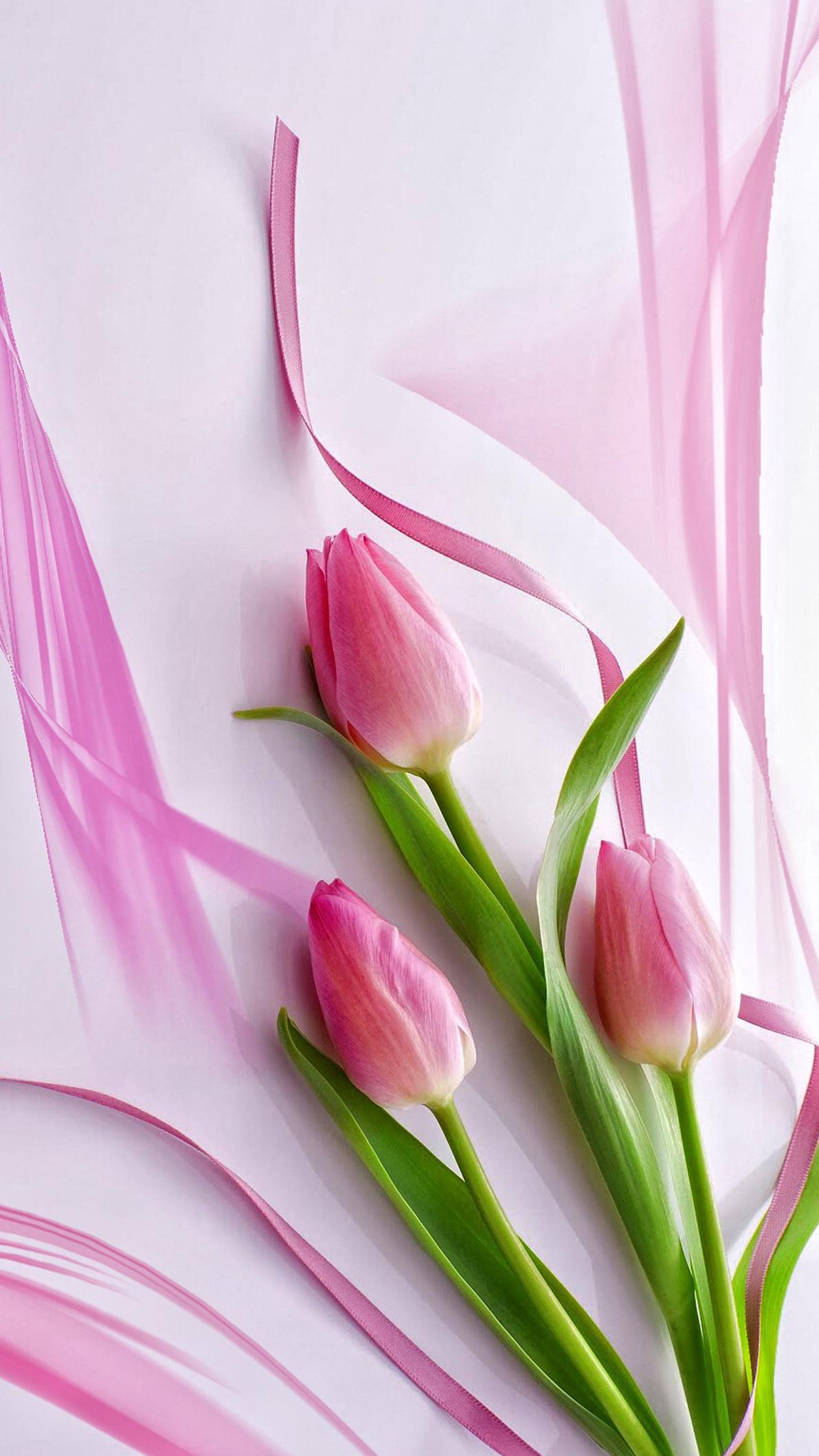 Cute Pink Tulips iPhone 6+ Wallpaper – https://helpyourselfimages.com/