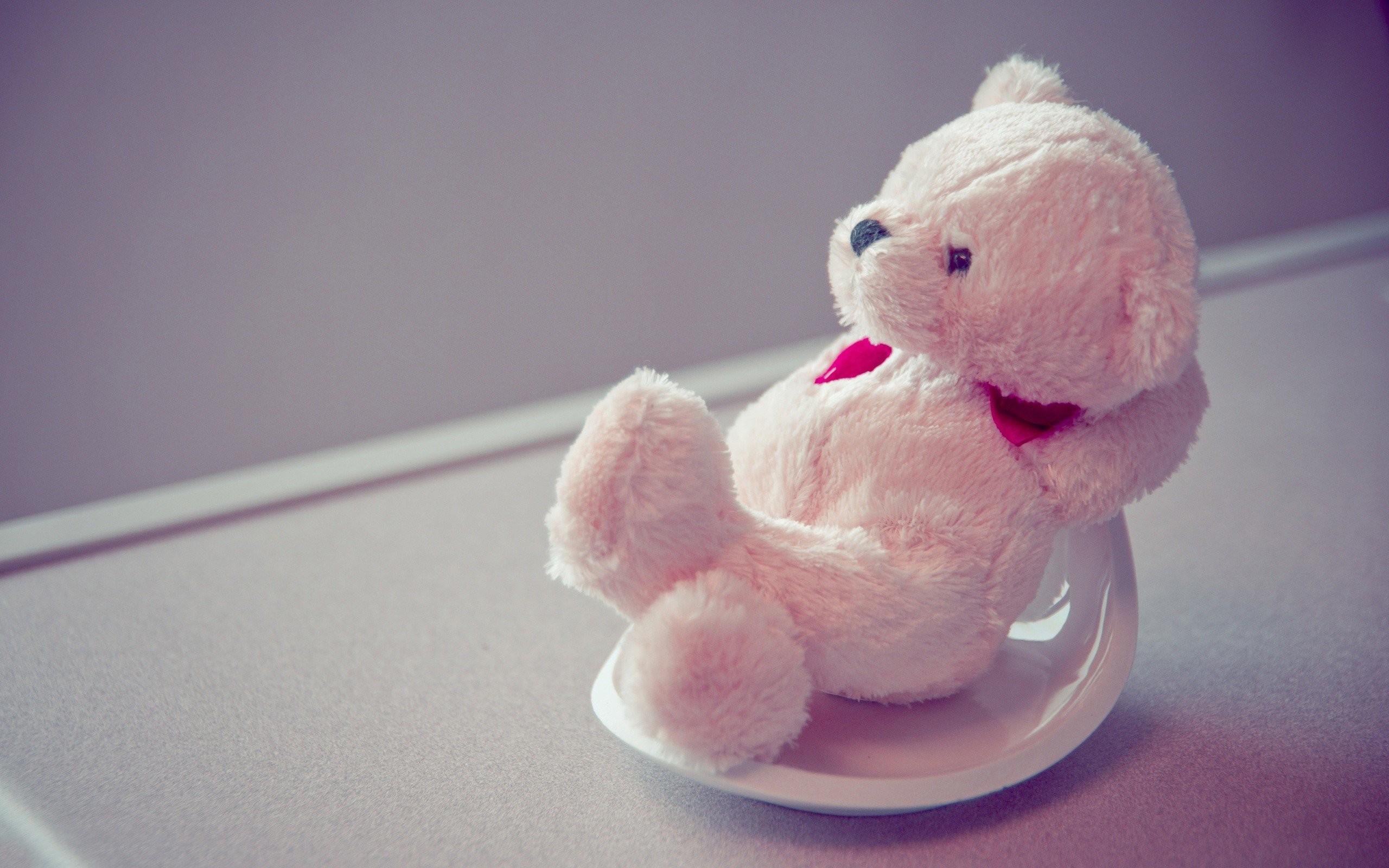 Pink Teddy Bear Wallpaper