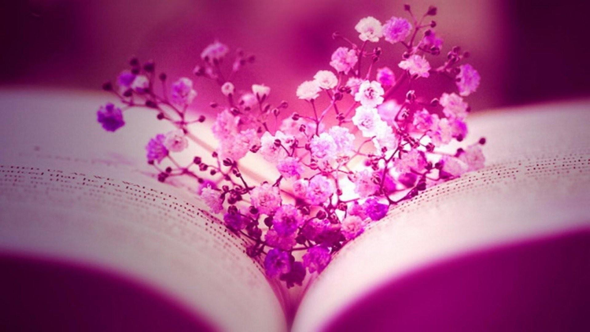 Lovely Pink Flowers Desktop Wallpaper HD