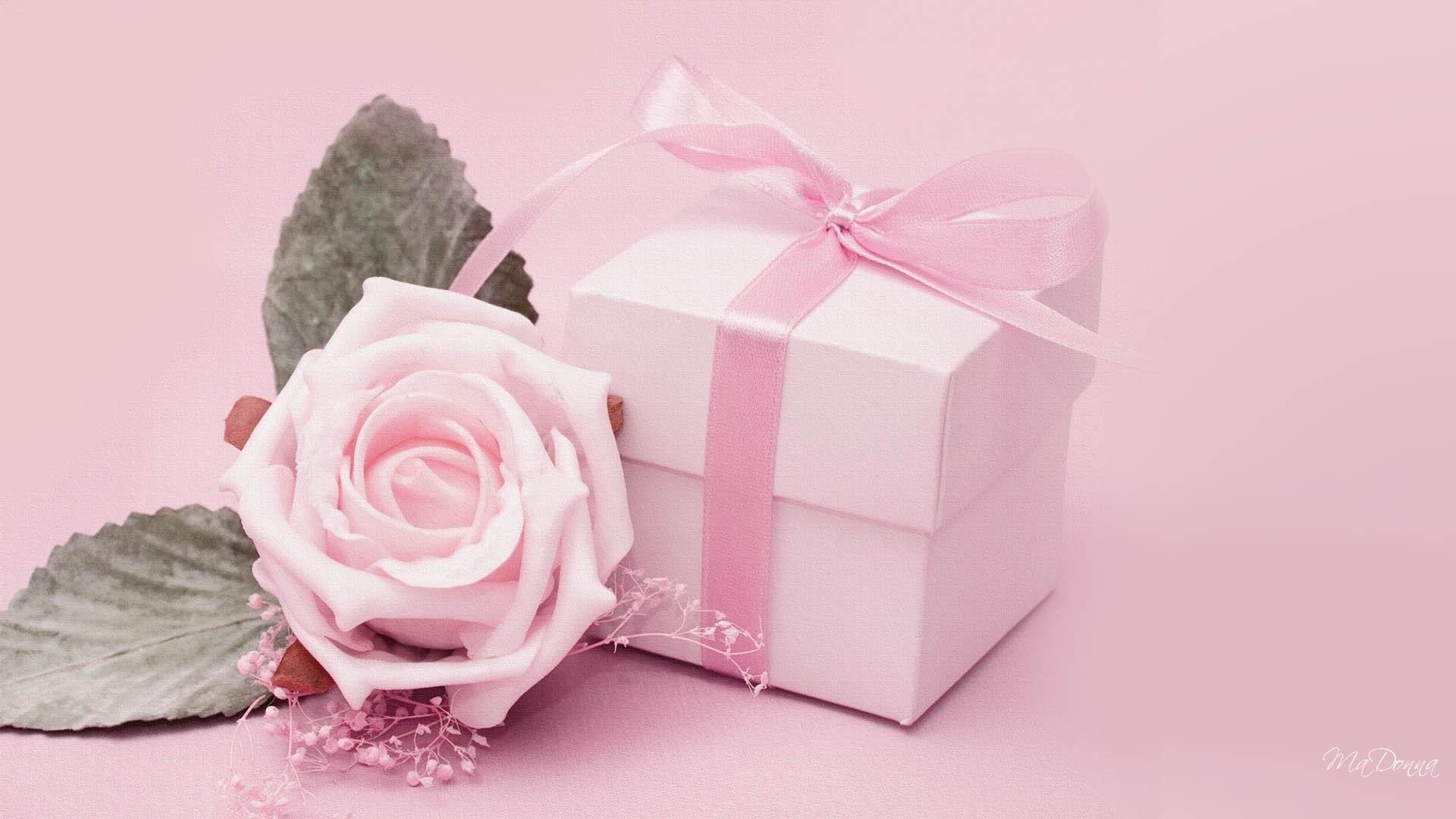 Wallpaper, wallpaper, Pink Flower Desktop Wallpaper hd wallpaper .
