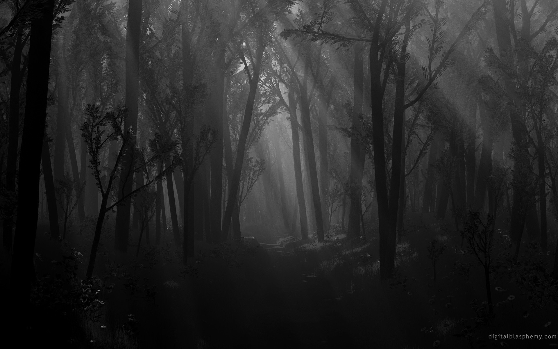 Dark Black and White Wallpaper | … in the dark forest via garganta he
