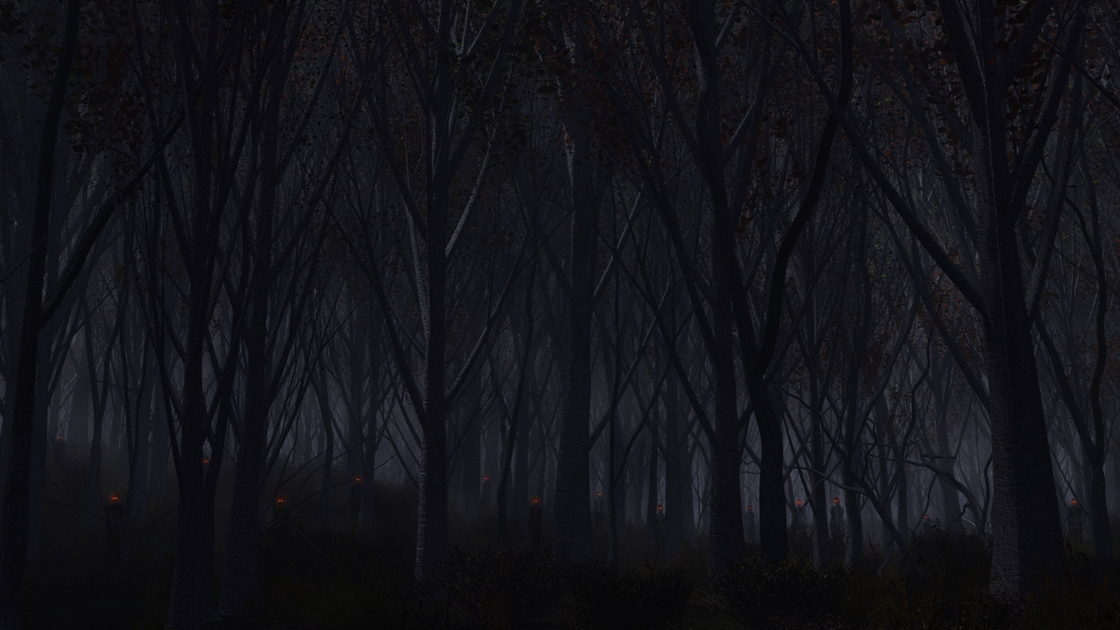 Preview wallpaper forest, trees, background, dark 3840×2160