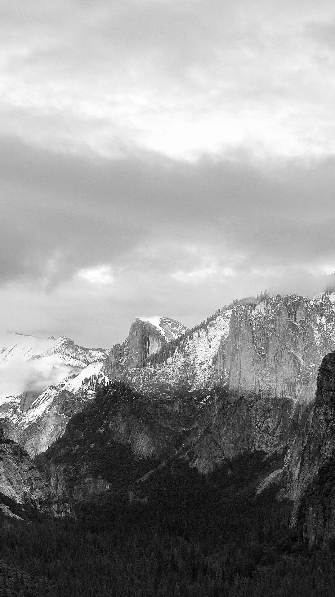 Dark Grayscale Mountains Forest Landscape #iPhone #6 #plus #wallpaper