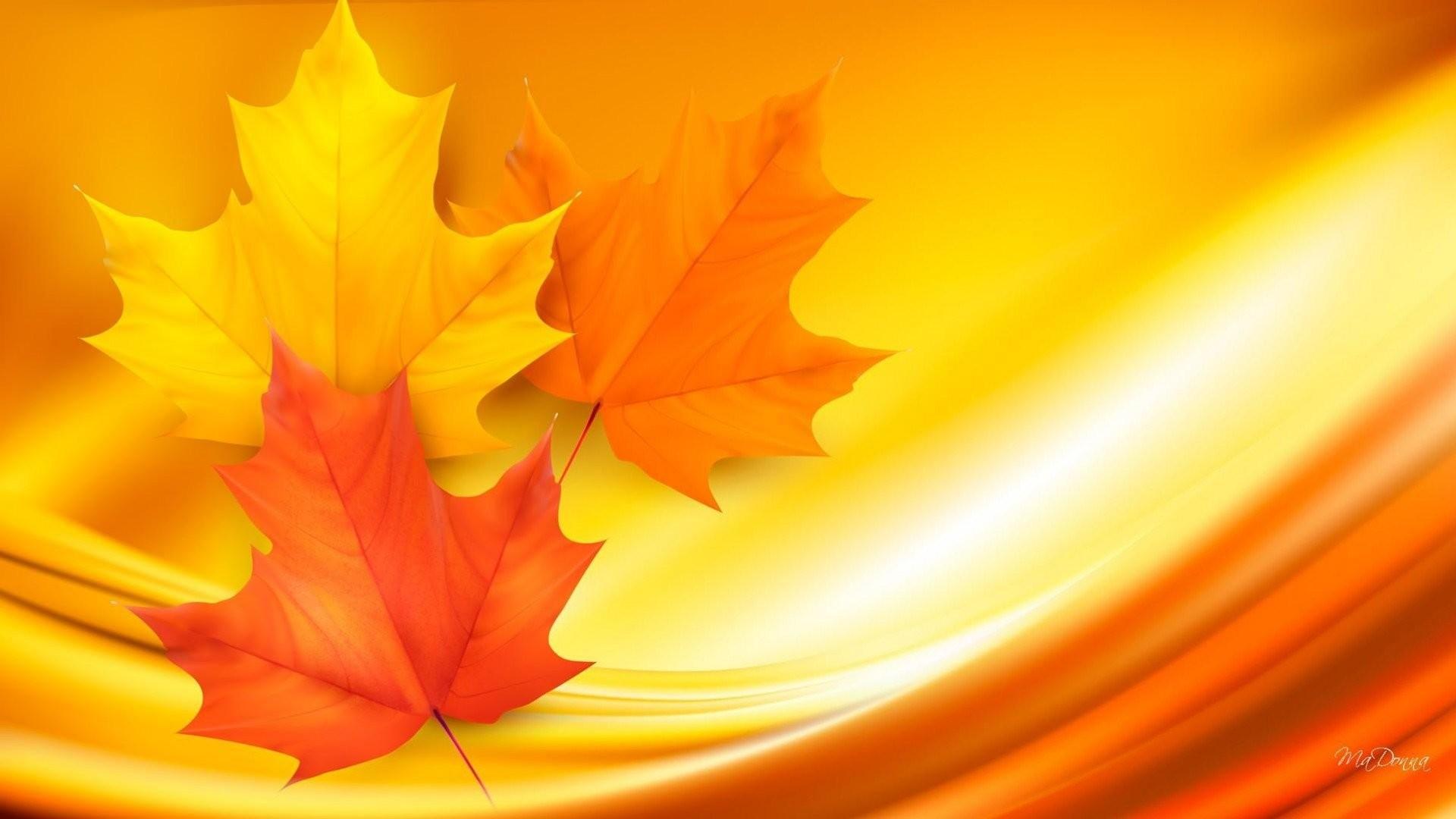 Artistic – Fall Artistic Leaf Maple Leaf Orange Yellow Wallpaper