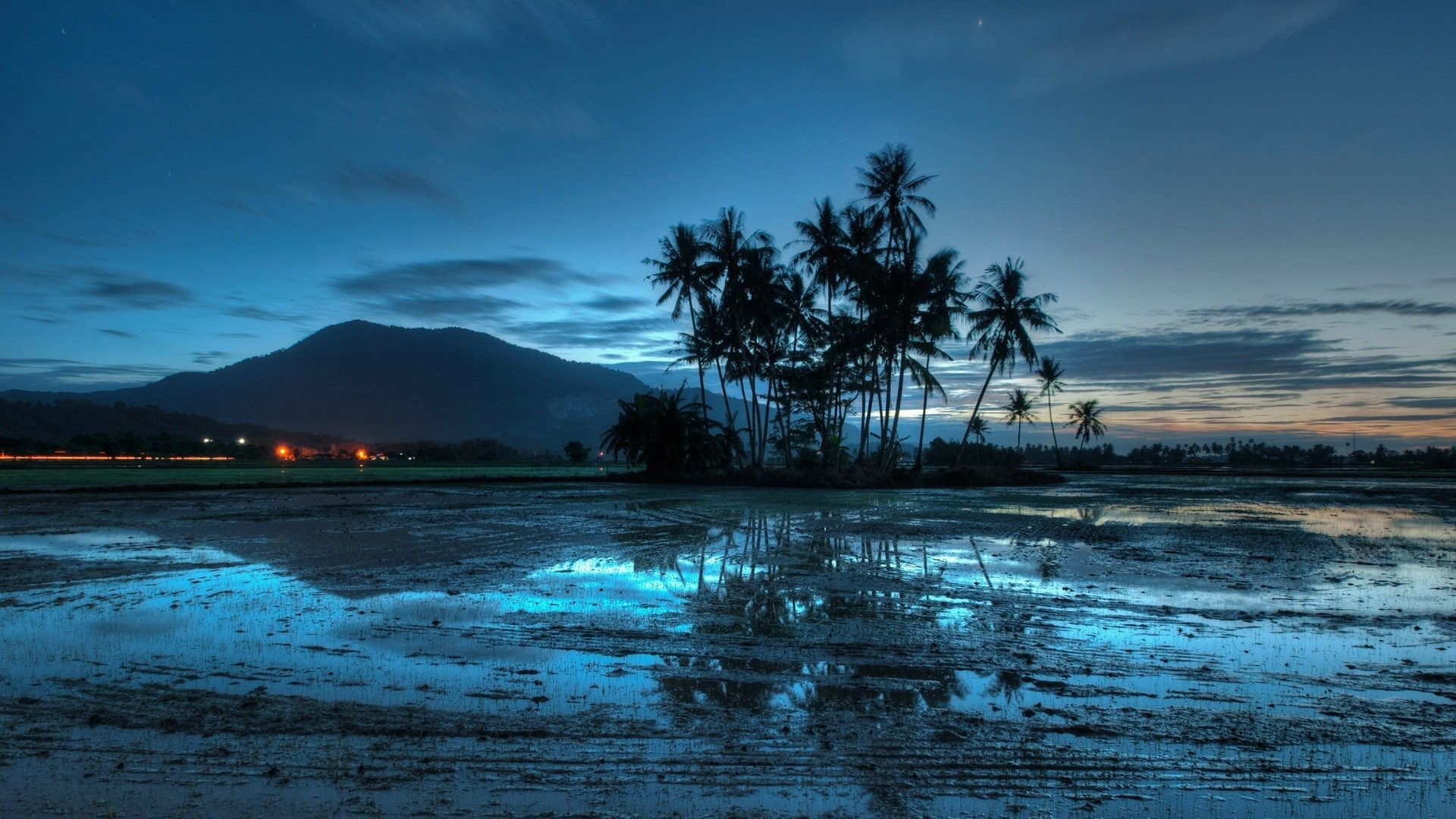 Blue Clouds Evening Landscapes Lights Malaysia Nature Palm Trees Sky Sunset  Water