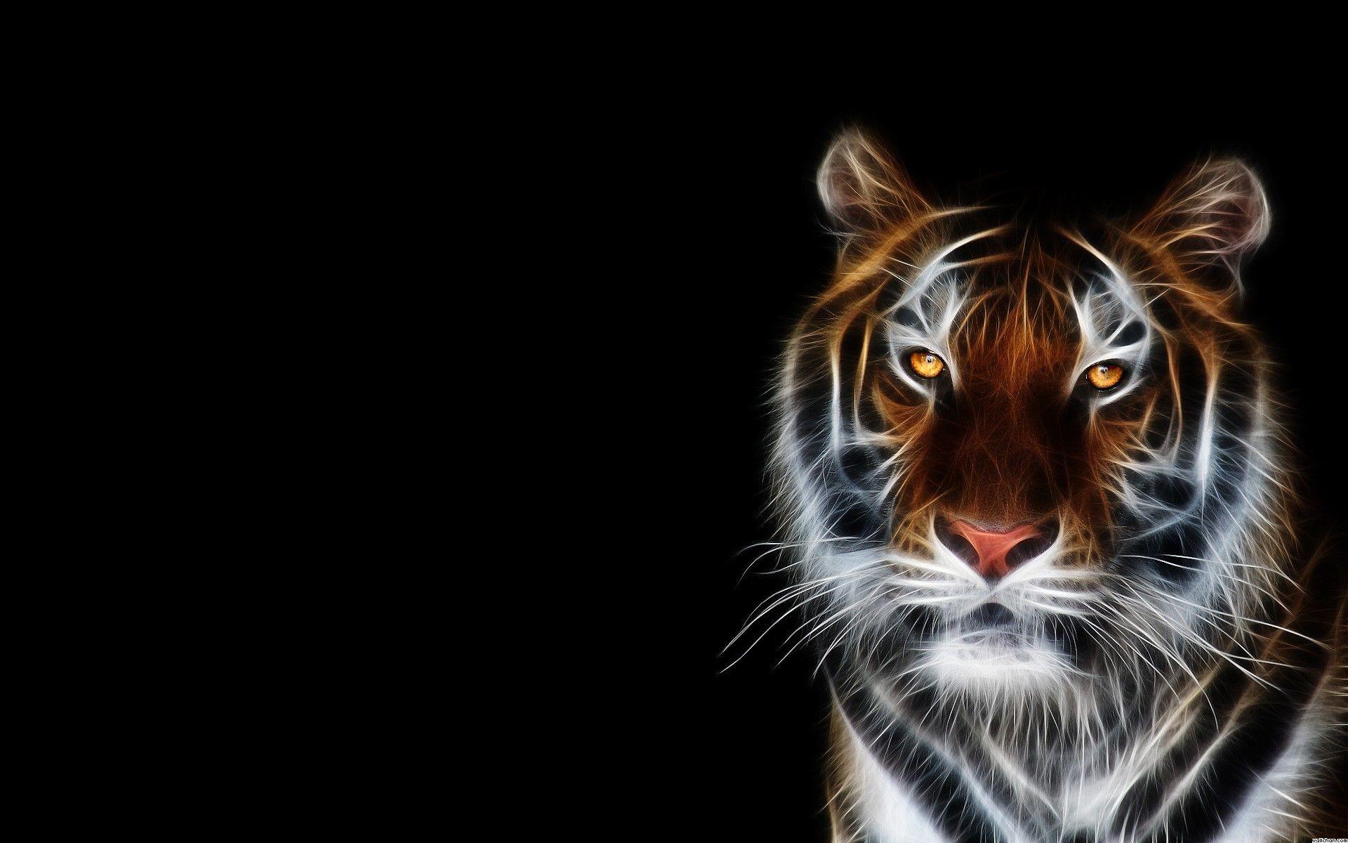 Neon Animal Backgrounds   Desktop Image