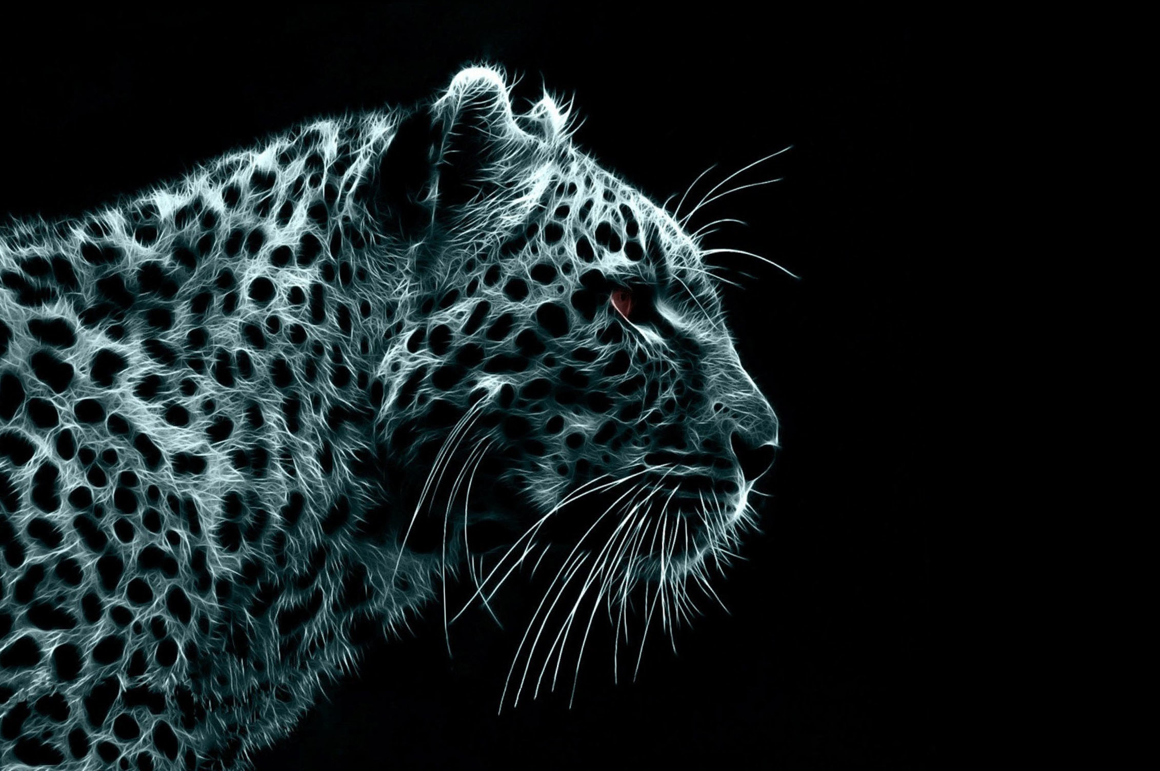 Cool animal backgrounds – Jpg Amazing Animal Backgrounds