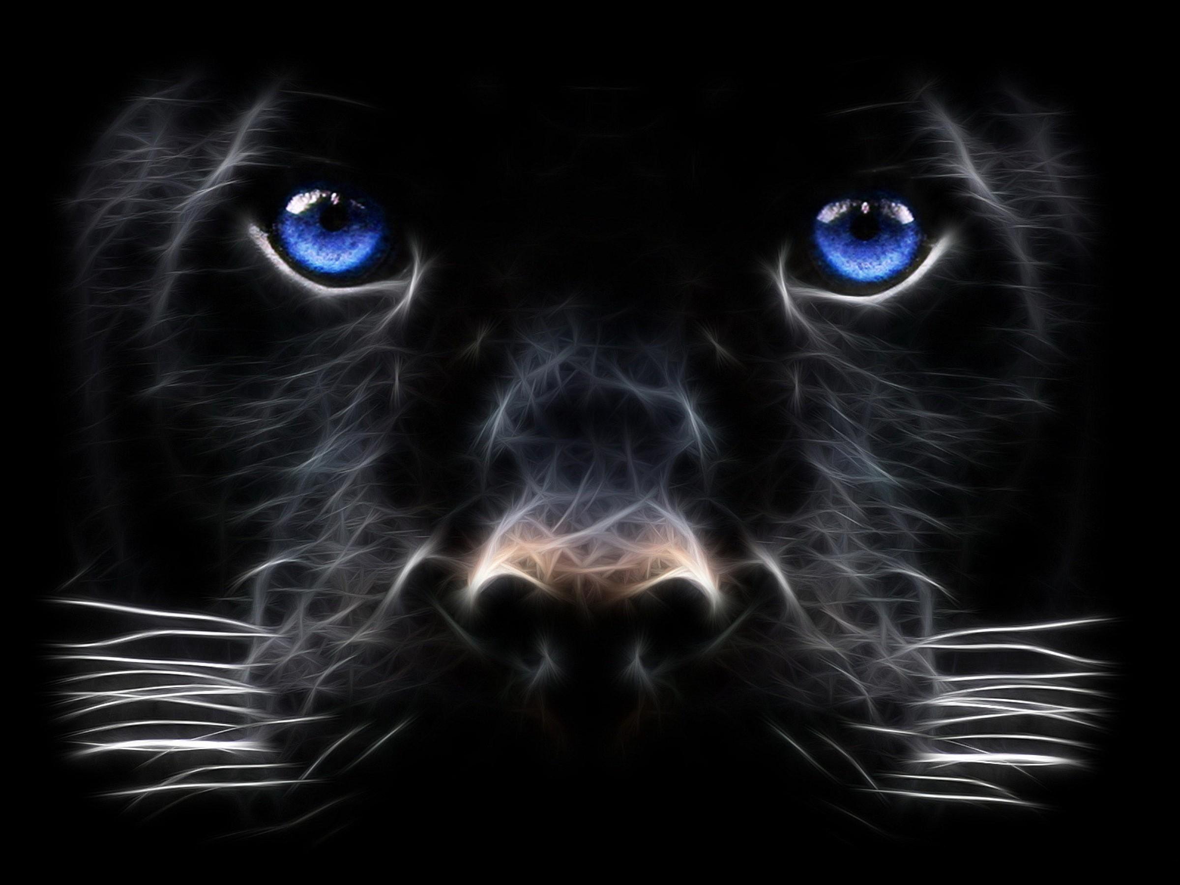 HD Wallpaper | Background ID:433886. Animal Black Panther
