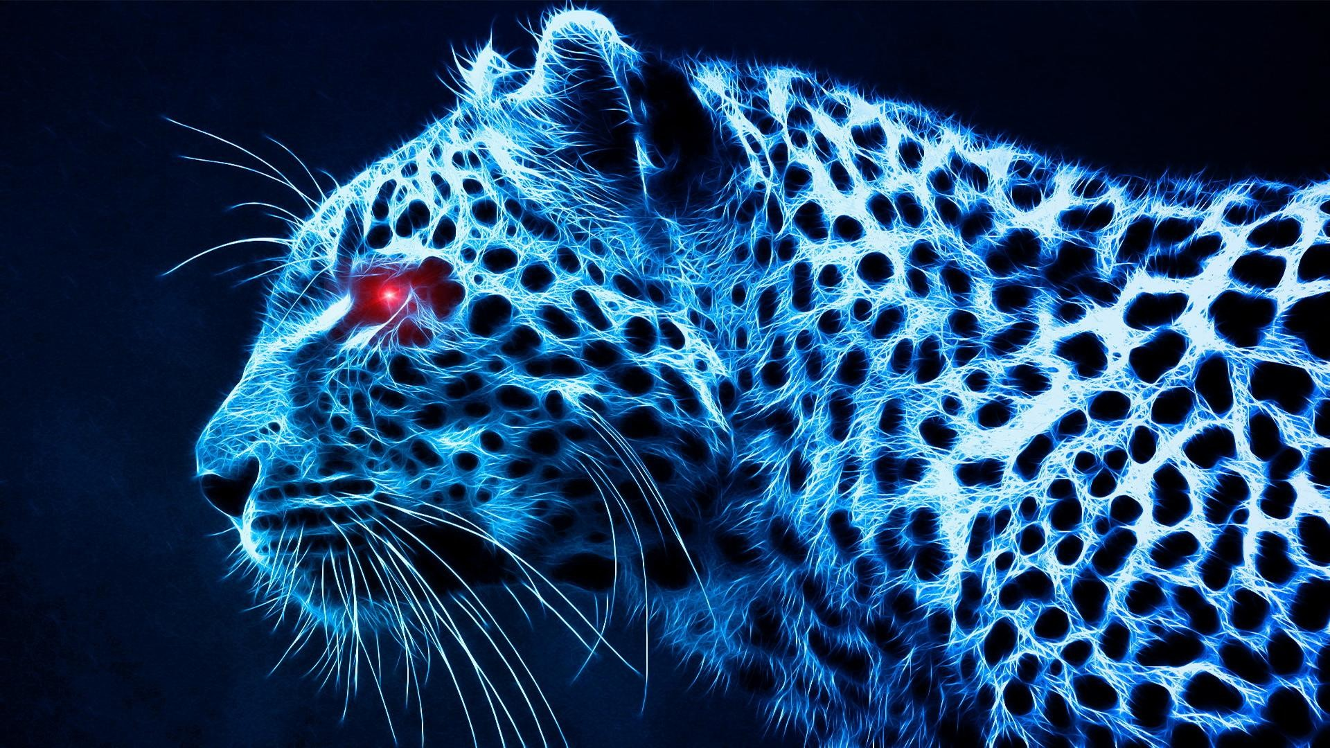 Photos-Download-Leopard-Wallpapers-HD