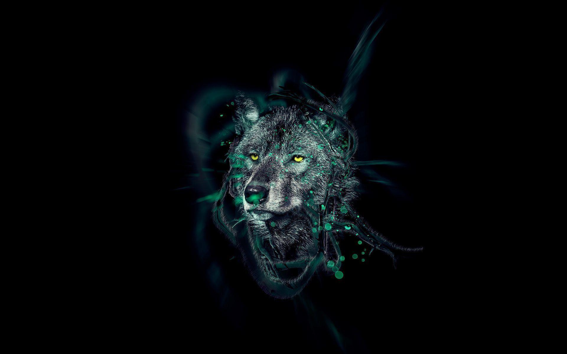 Neon Animals Wallpapers – Ayleet