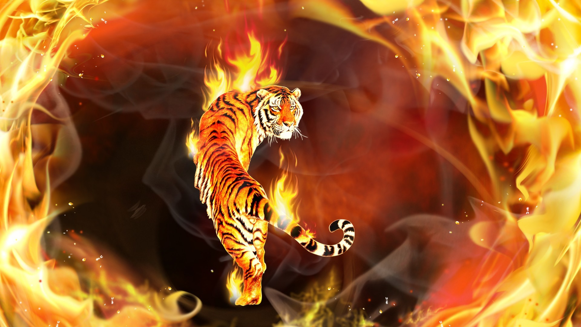 Flame Animals, Fire Tiger 02 Jpg, Animal Wallpaper, Fire Flames, 7015694  Tiger On Fire Jpg Fire Wallpapers