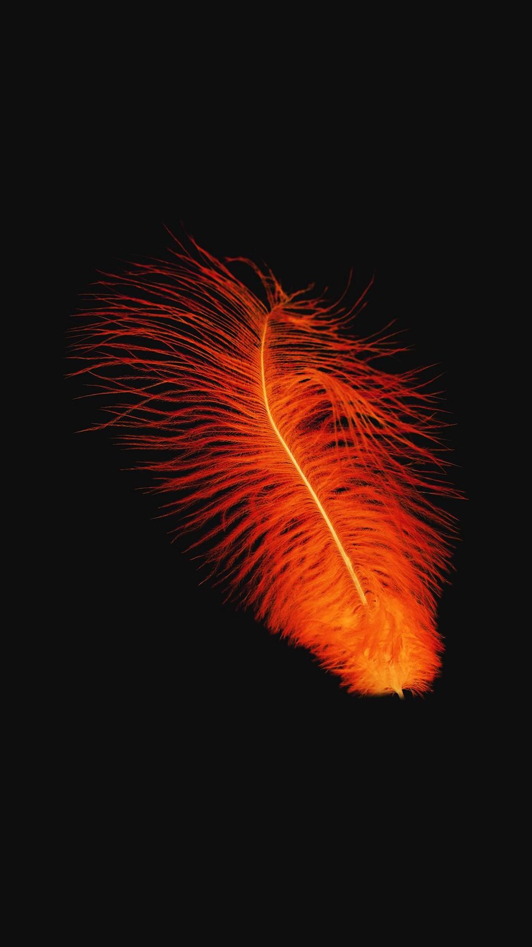 Feather Orange Dark Nature Minimal iPhone 8 wallpaper