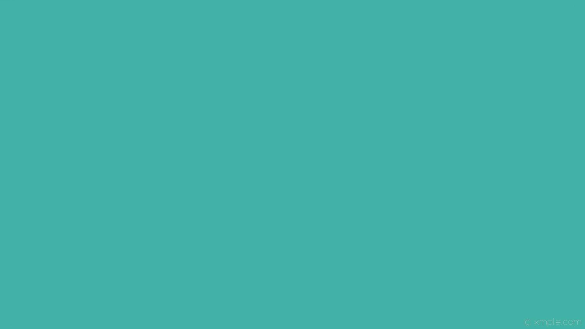 wallpaper cyan solid color plain single one colour #41b2a5
