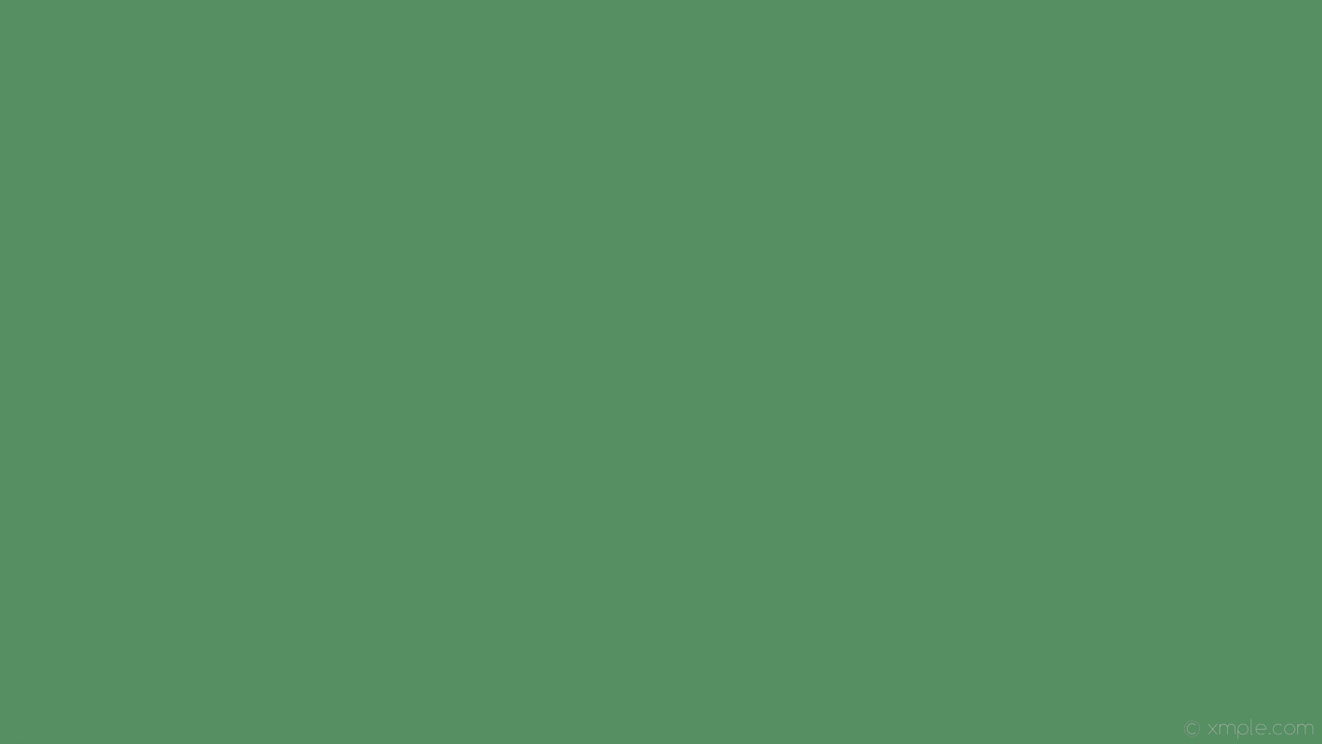 wallpaper single plain solid color green one colour #558f62