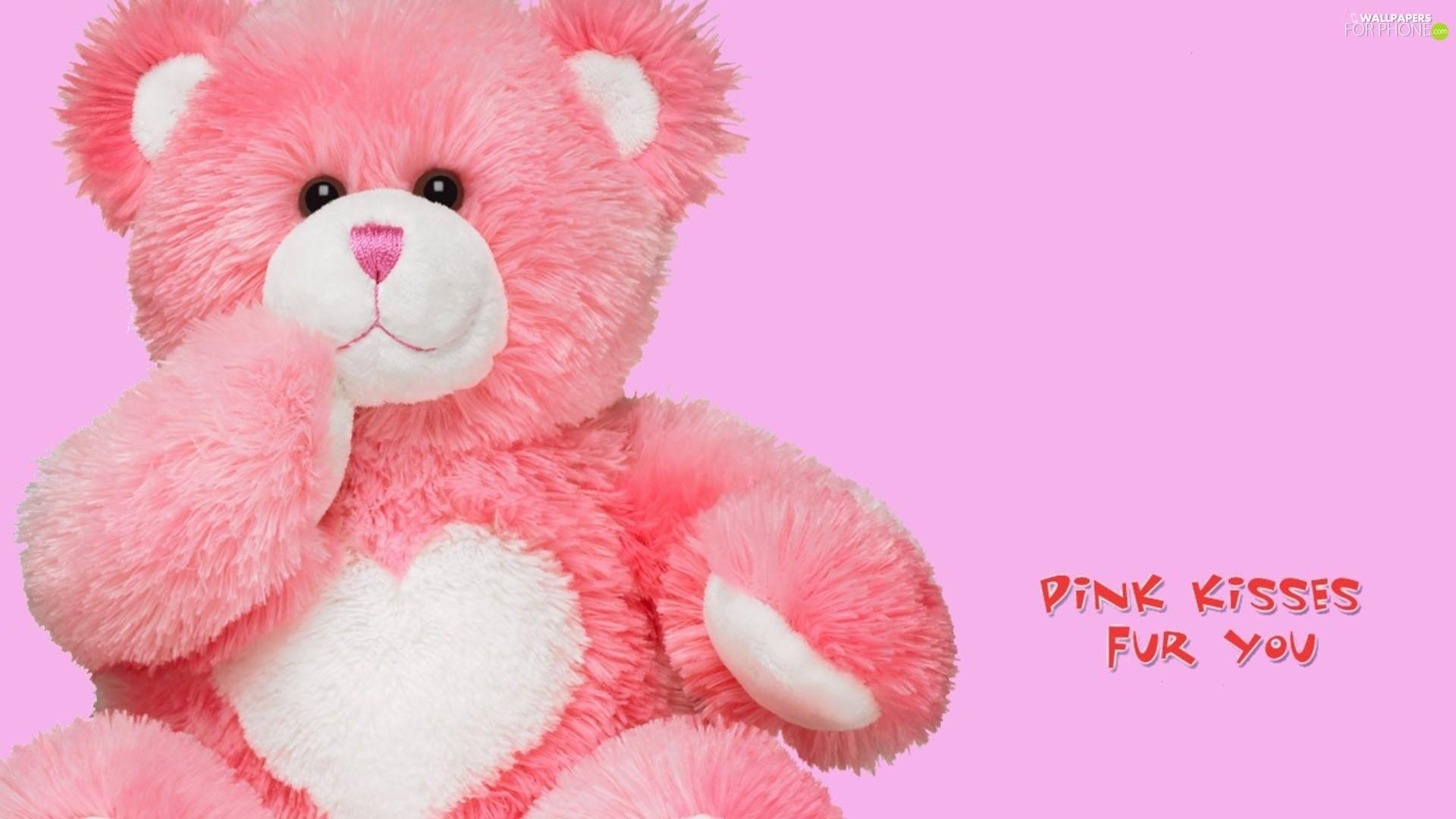 Pink, Fur, teddy bear