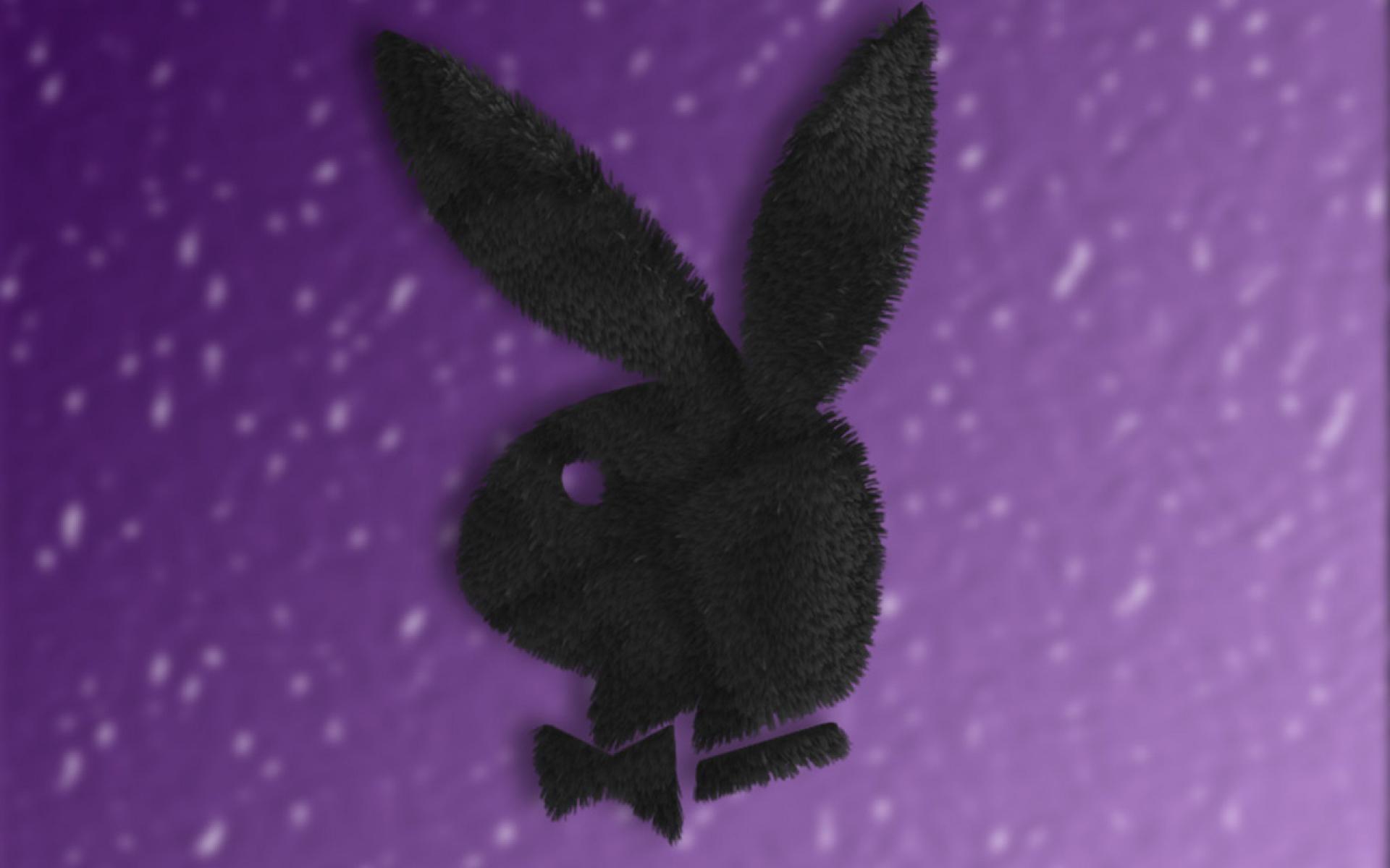 Playboy Fur Logo Wallpaper