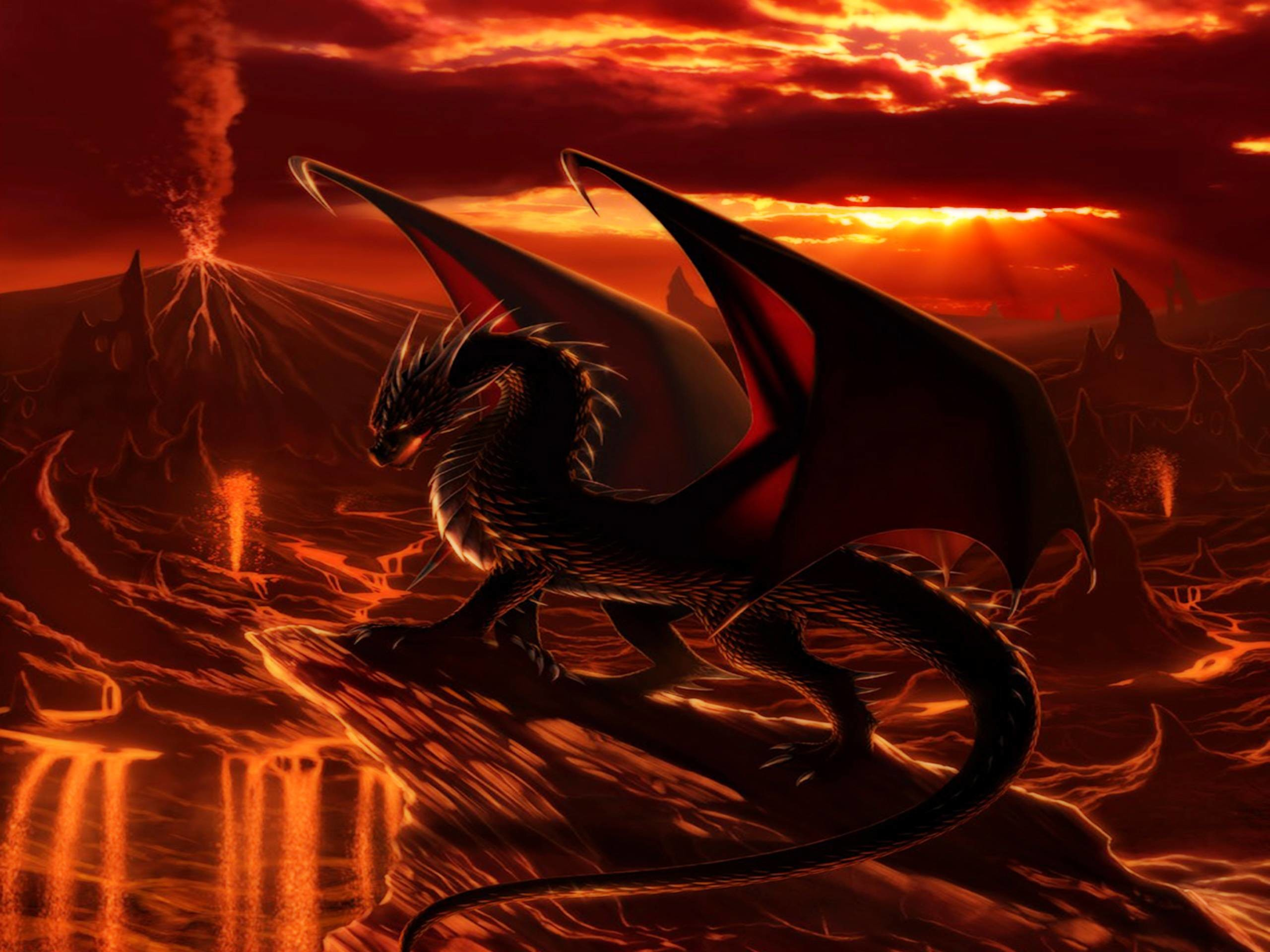 1571 Dragon Wallpapers   Dragon Backgrounds