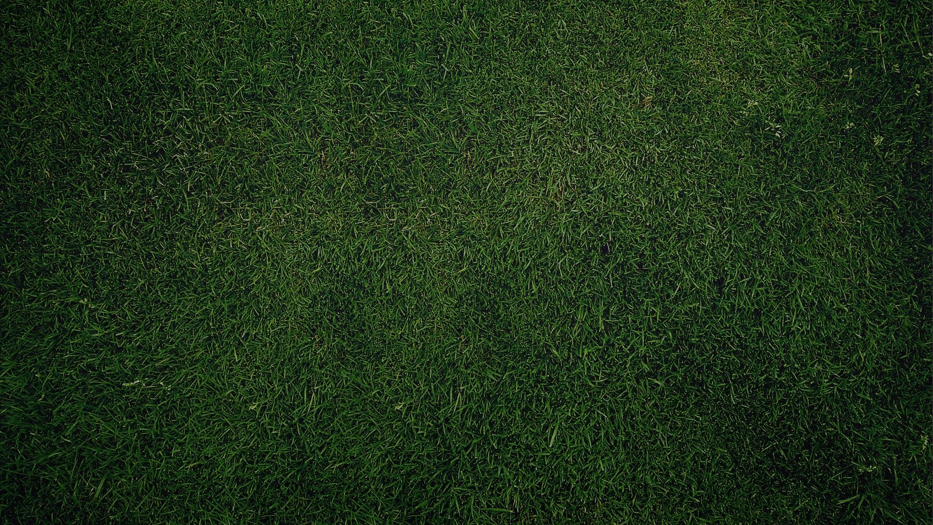 Green Grass Background. How to set wallpaper on your desktop?  Click the download link from above and set the wallpaper on the desktop  from your …