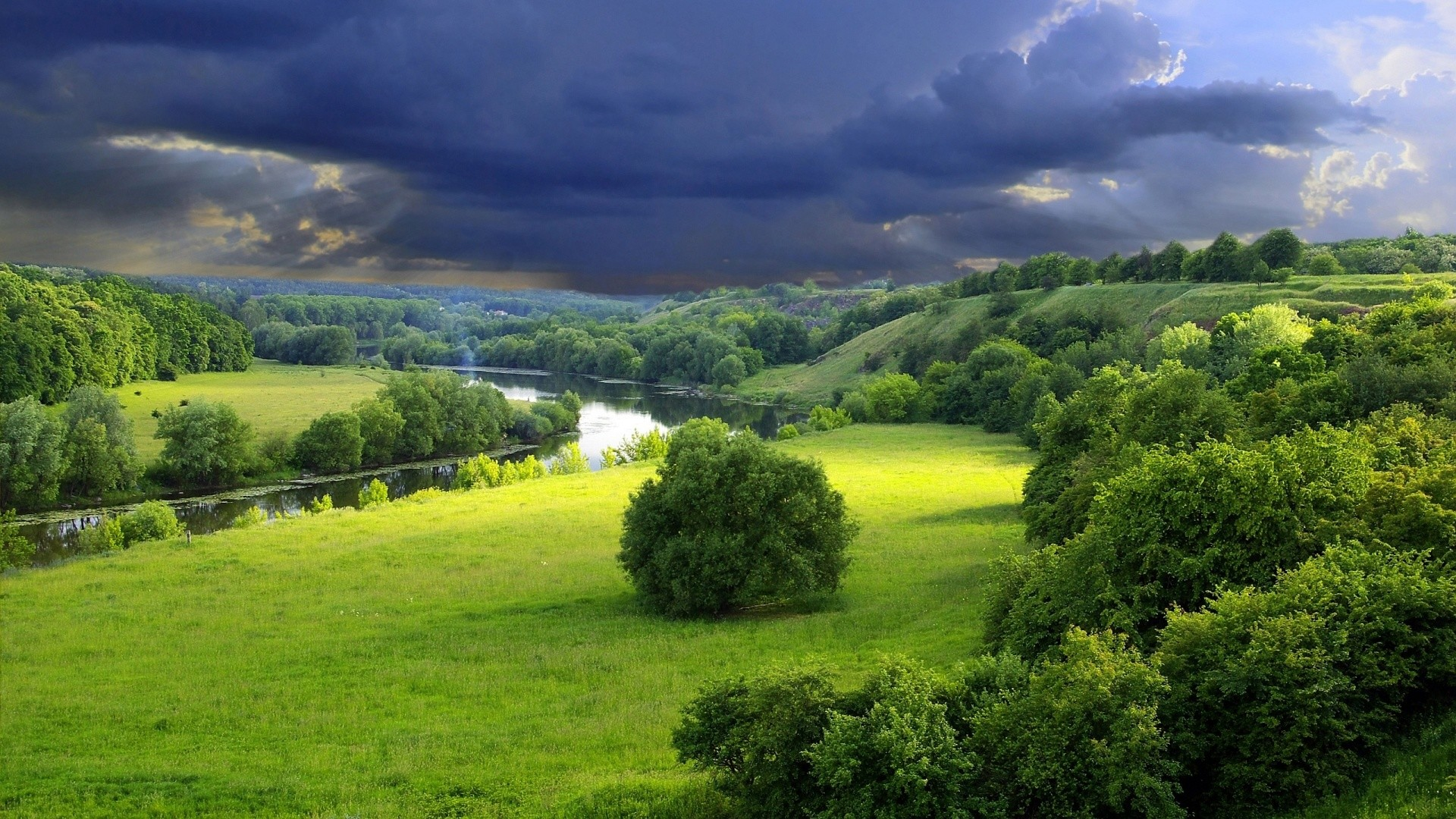green landscape wallpaper 6931