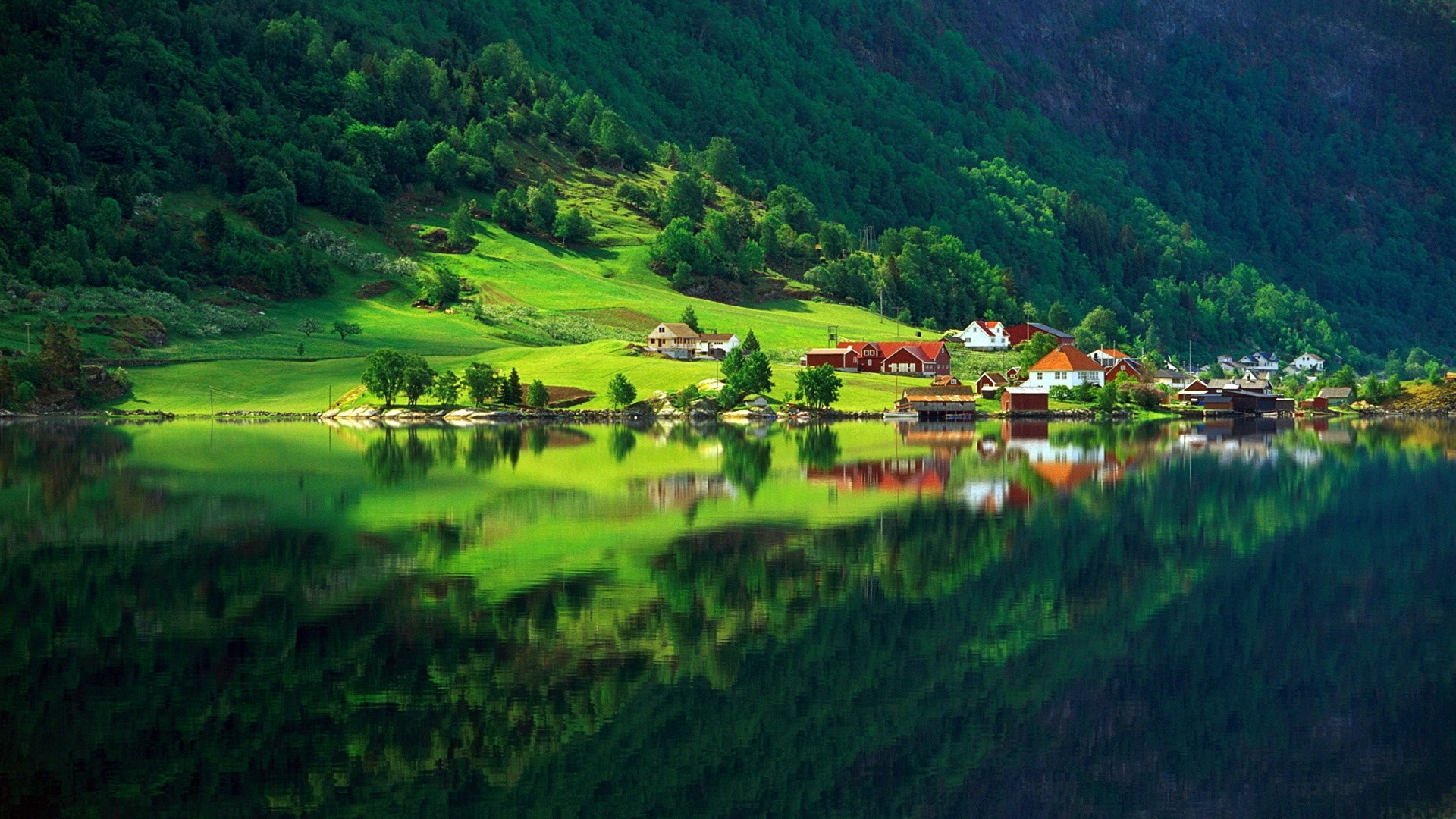 nature forest green summer home village lake 1920×1080 desktop wallpapers  4k high definition windows