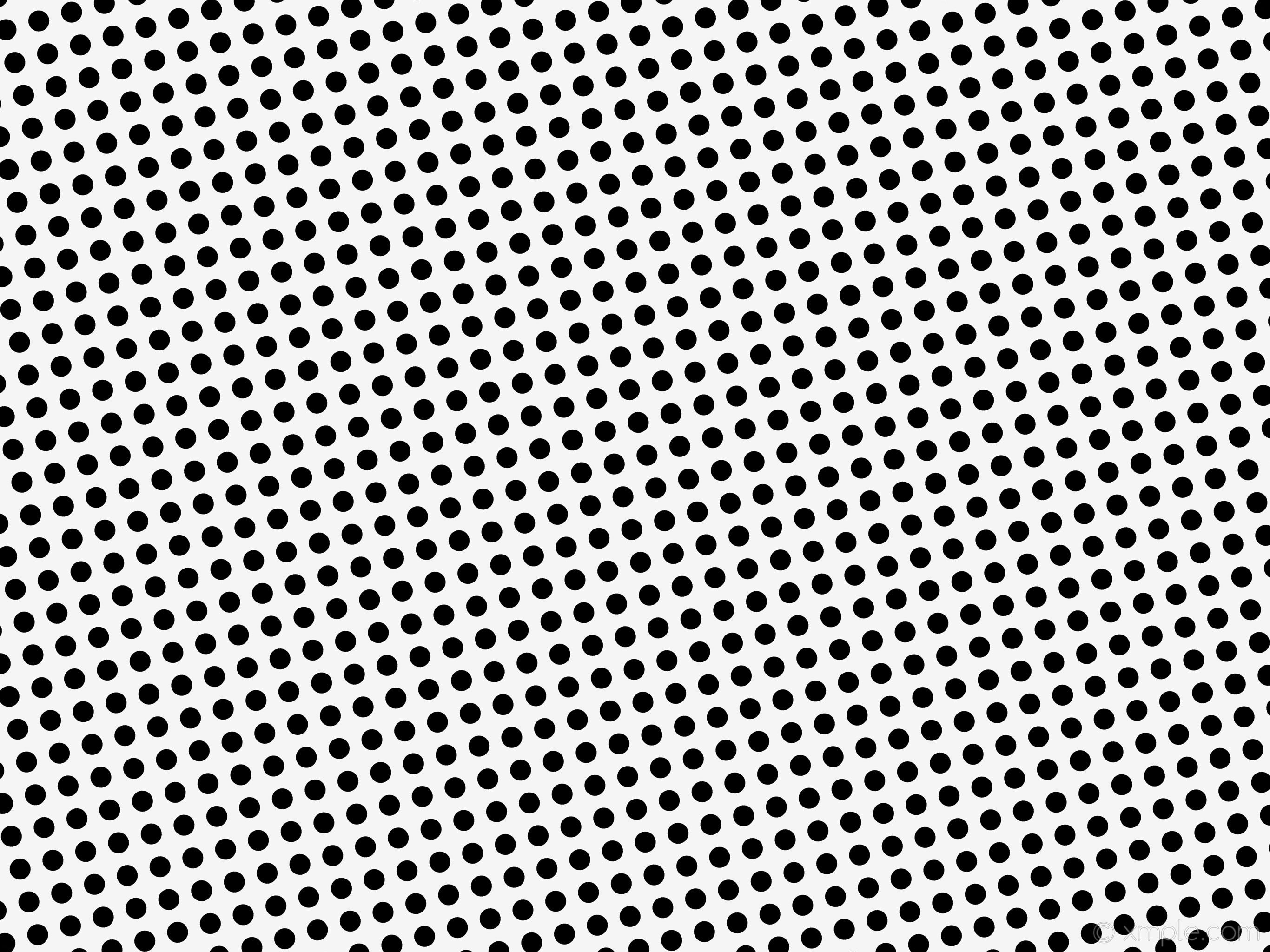 · 2048×2732