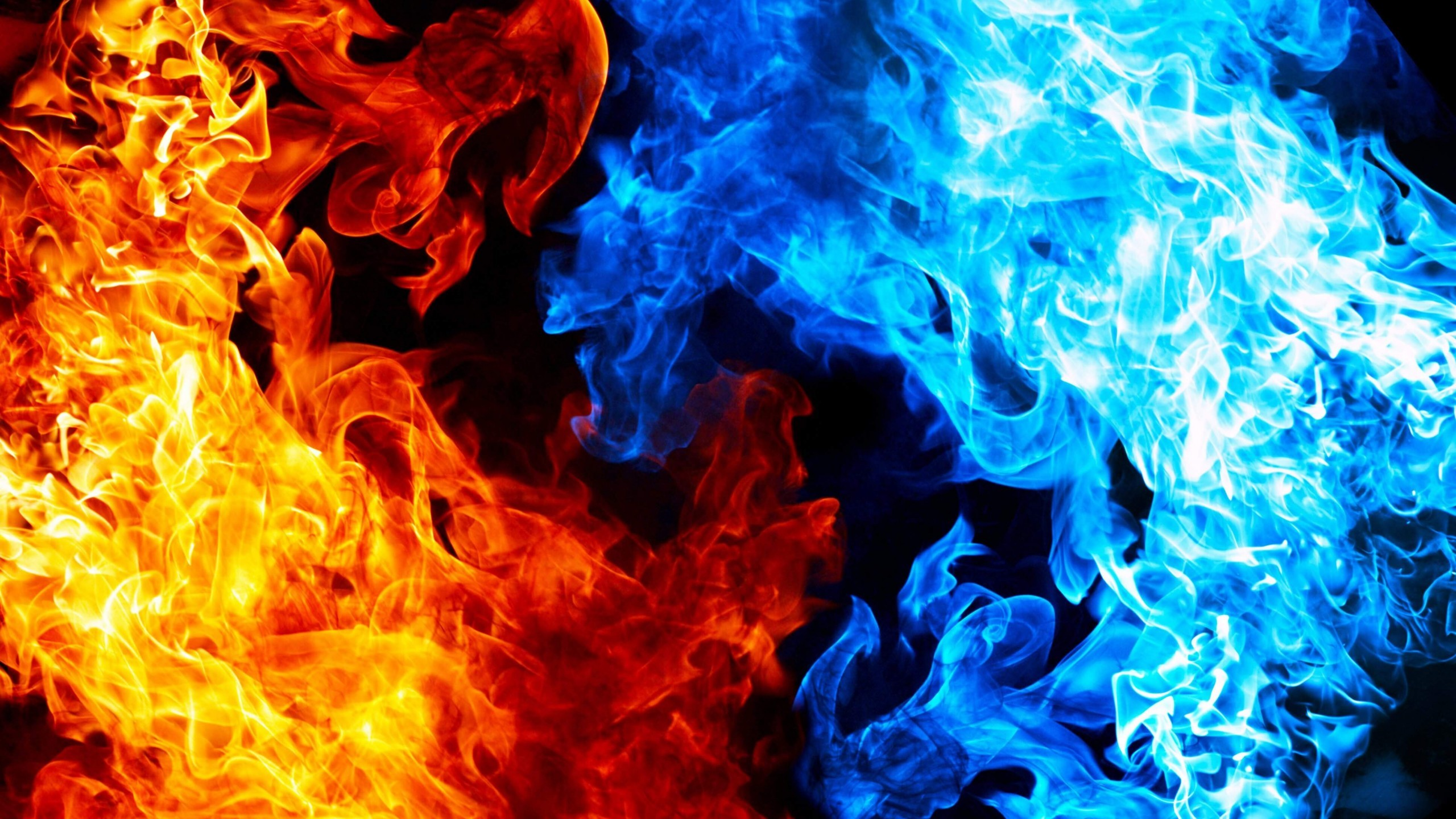 Blue And Red Fire Wallpaper for Desktop 2560 x 1440